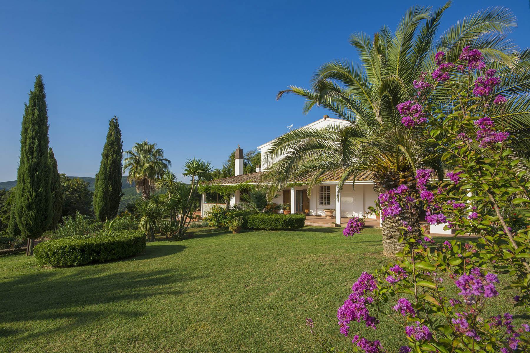 Villa in collina vista mare, nei pressi di Castiglioncello - 1