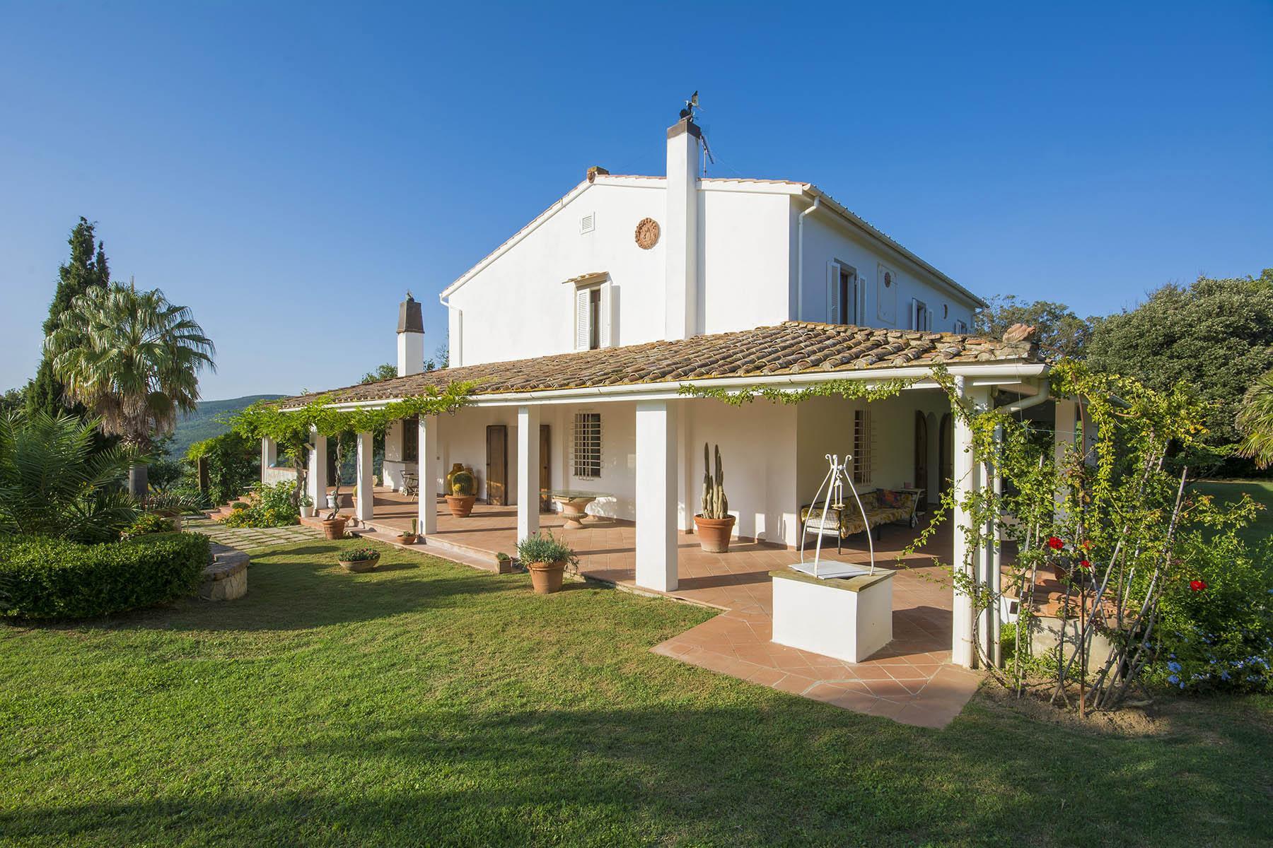 Villa in collina vista mare, nei pressi di Castiglioncello - 5