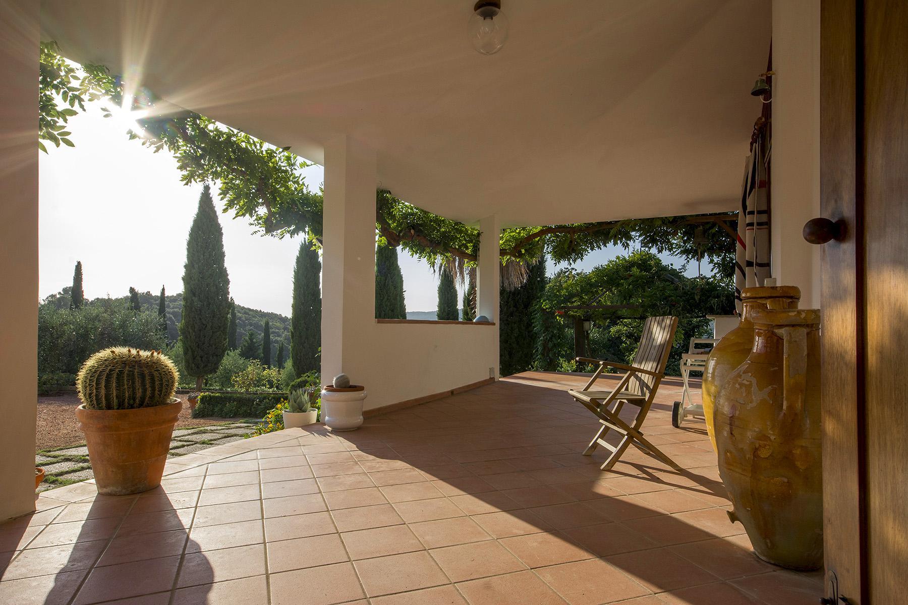 Villa in collina vista mare, nei pressi di Castiglioncello - 11