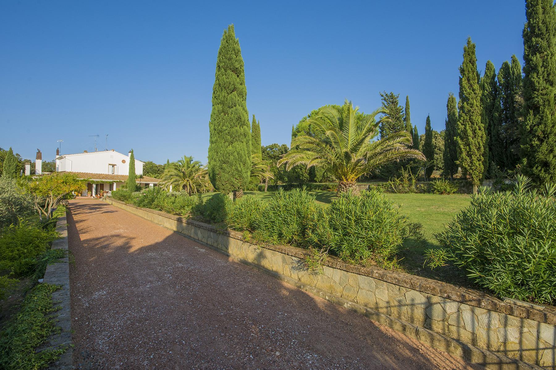 Villa in collina vista mare, nei pressi di Castiglioncello - 24