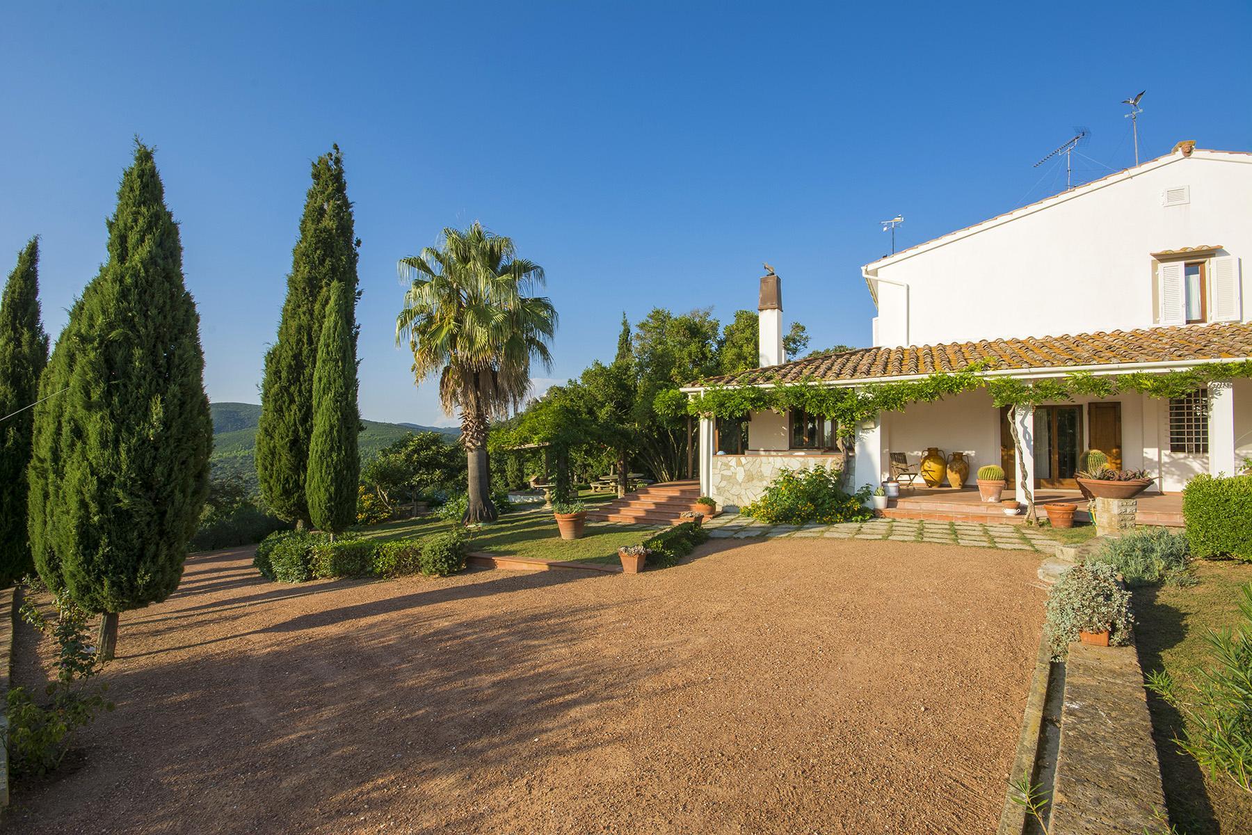 Wonderful villa with sea view close to Castiglioncello - 7