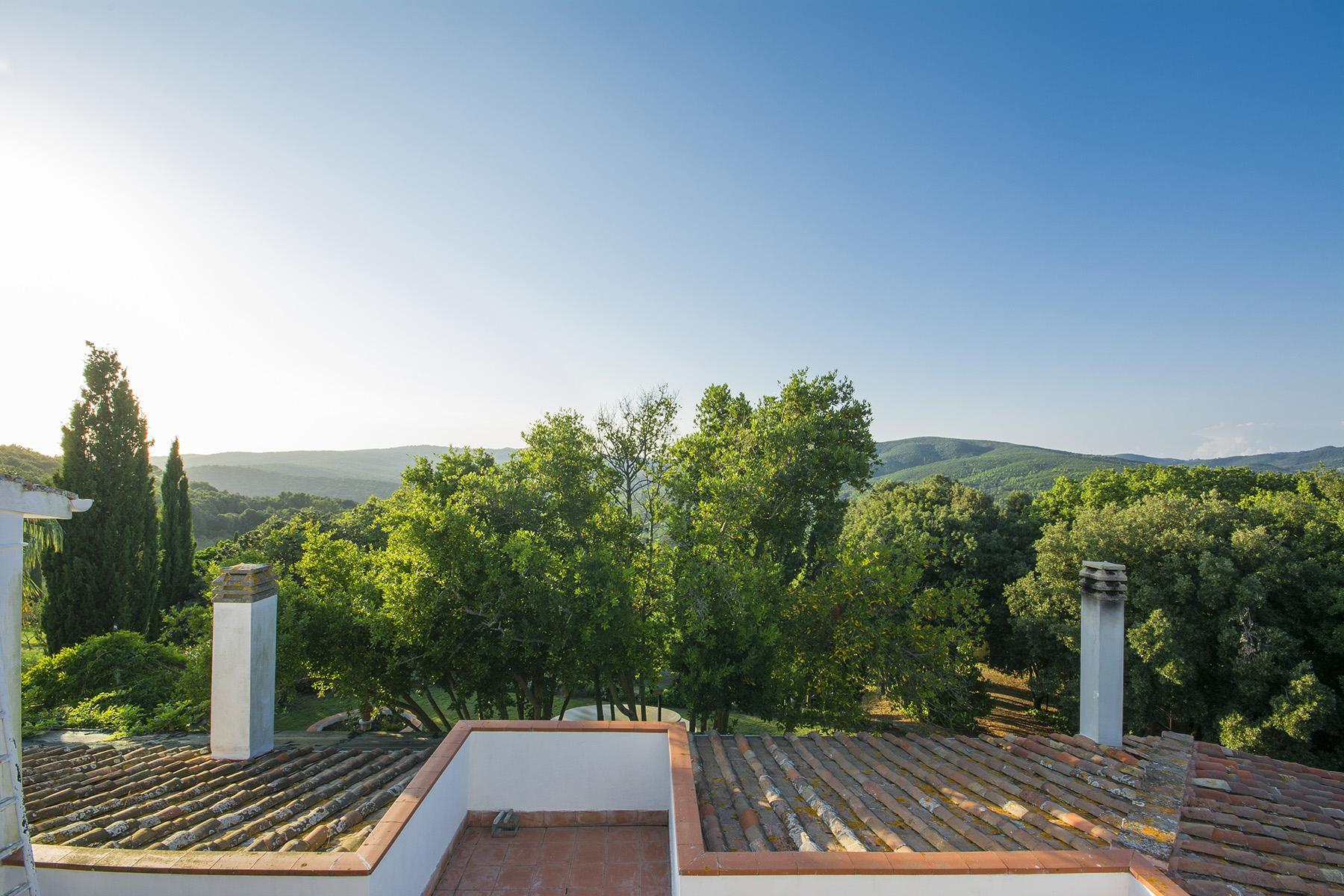Villa in collina vista mare, nei pressi di Castiglioncello - 26