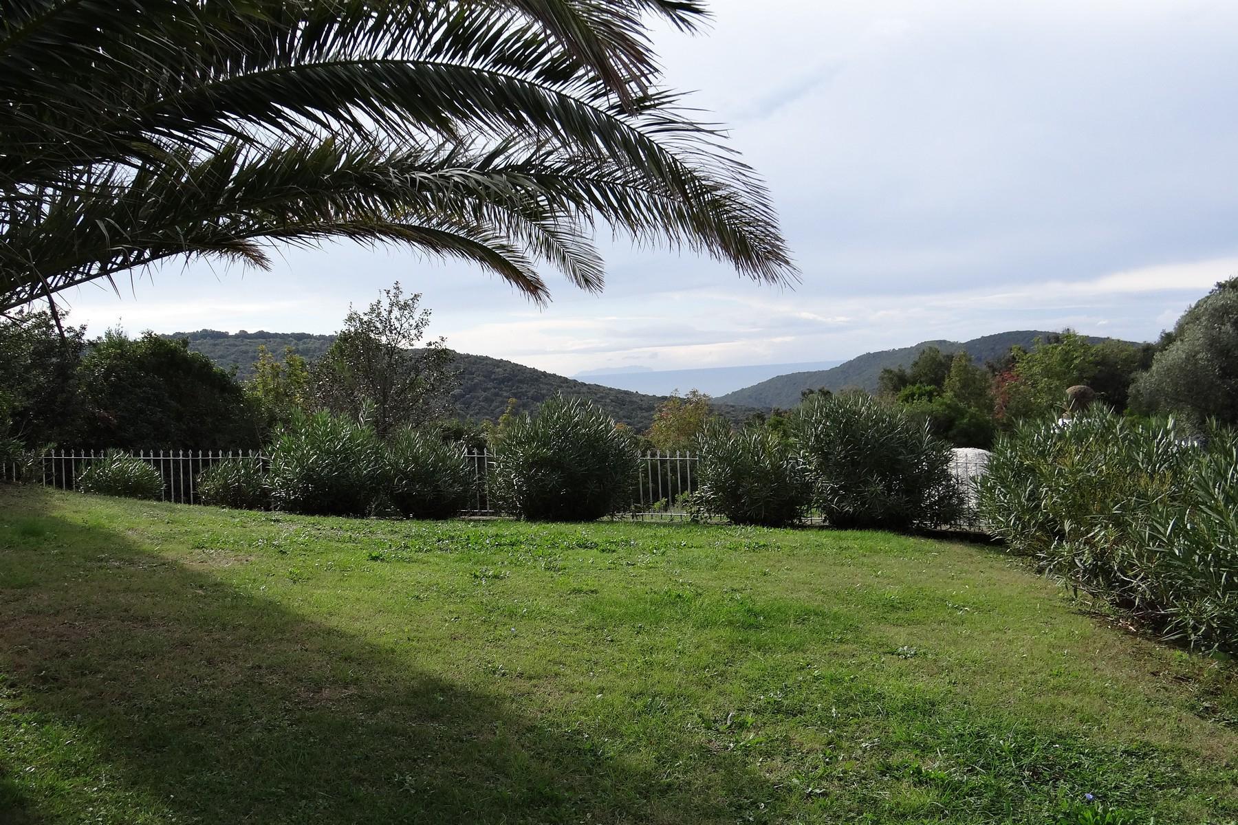Villa in collina vista mare, nei pressi di Castiglioncello - 10