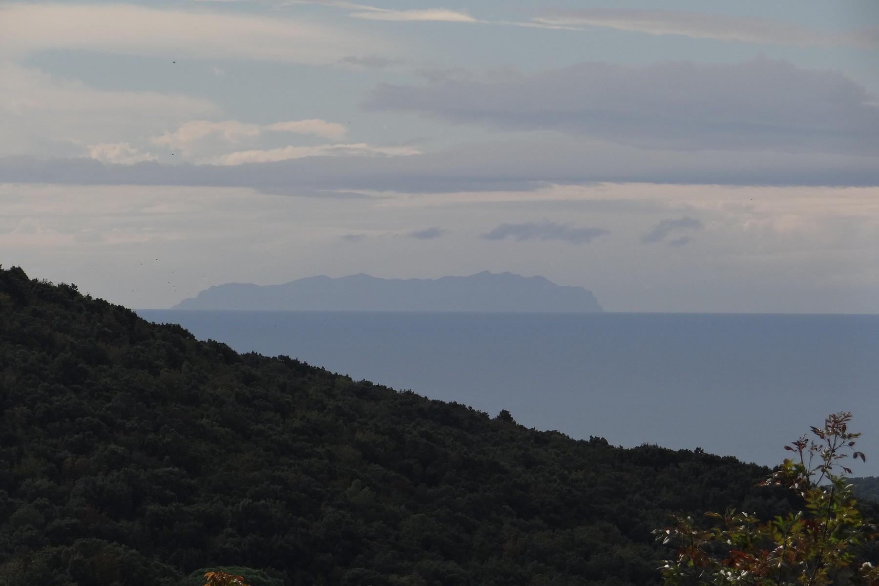 Wonderful villa with sea view close to Castiglioncello - 2