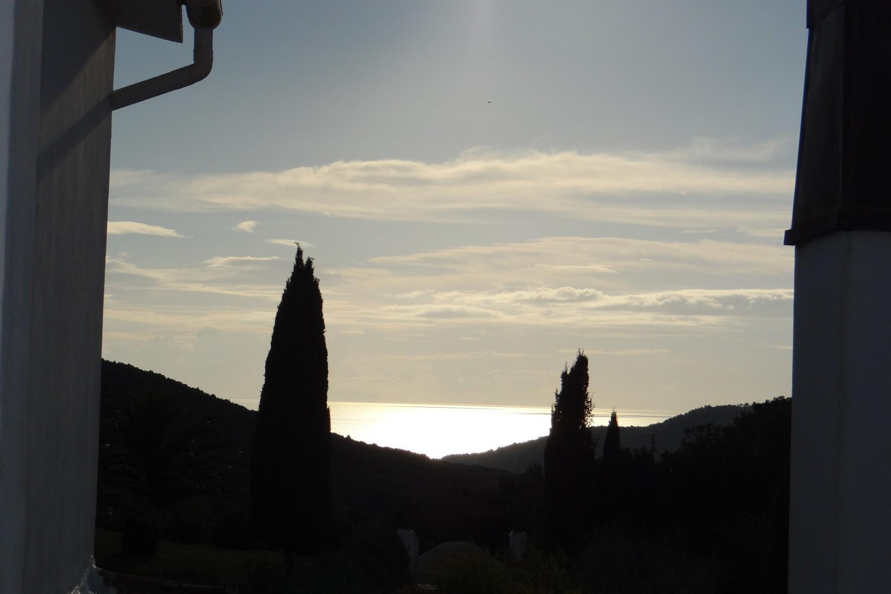 Villa in collina vista mare, nei pressi di Castiglioncello - 33