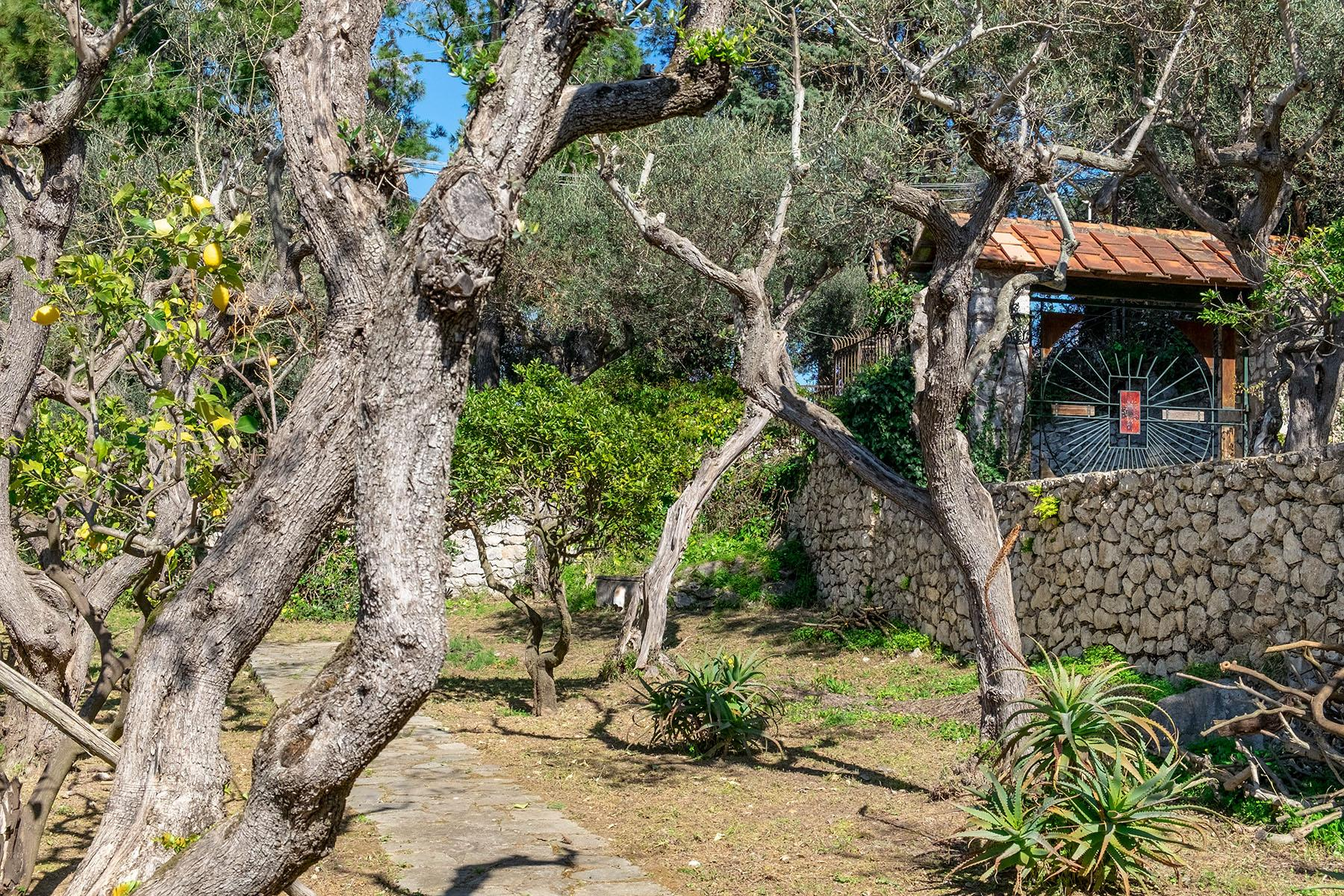 Wonderful villa with garden and seaview in Anacapri - 17