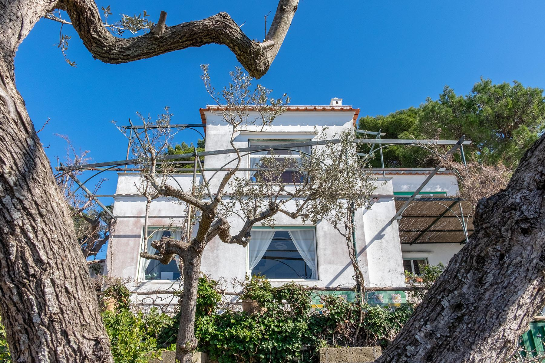 Wonderful villa with garden and seaview in Anacapri - 24