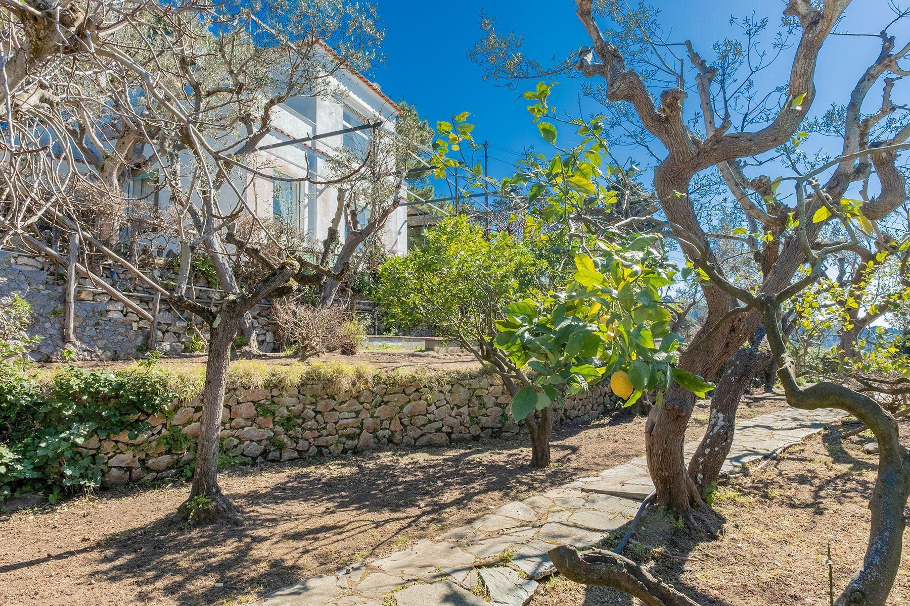 Wonderful villa with garden and seaview in Anacapri - 22