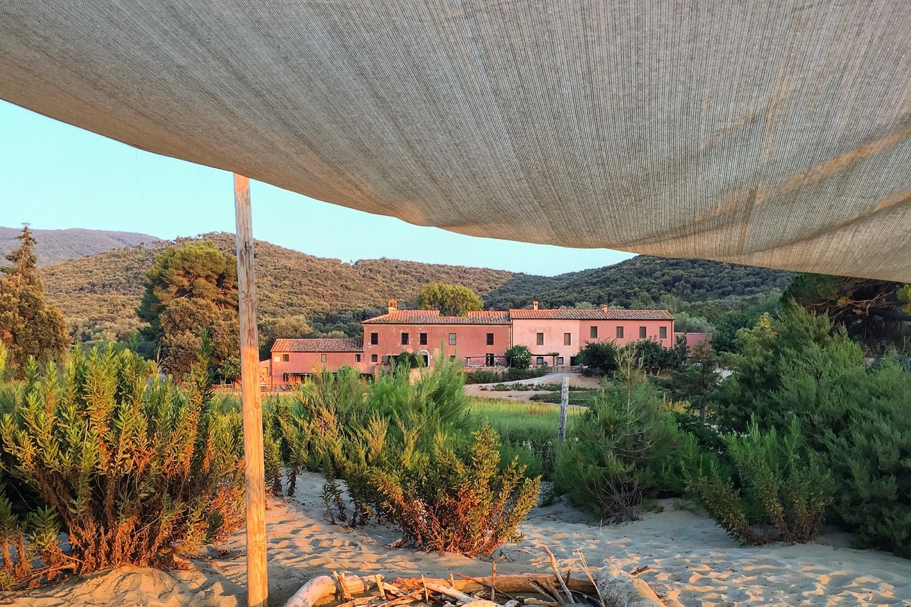 Extraordinary estate in the heart of Maremma - 2