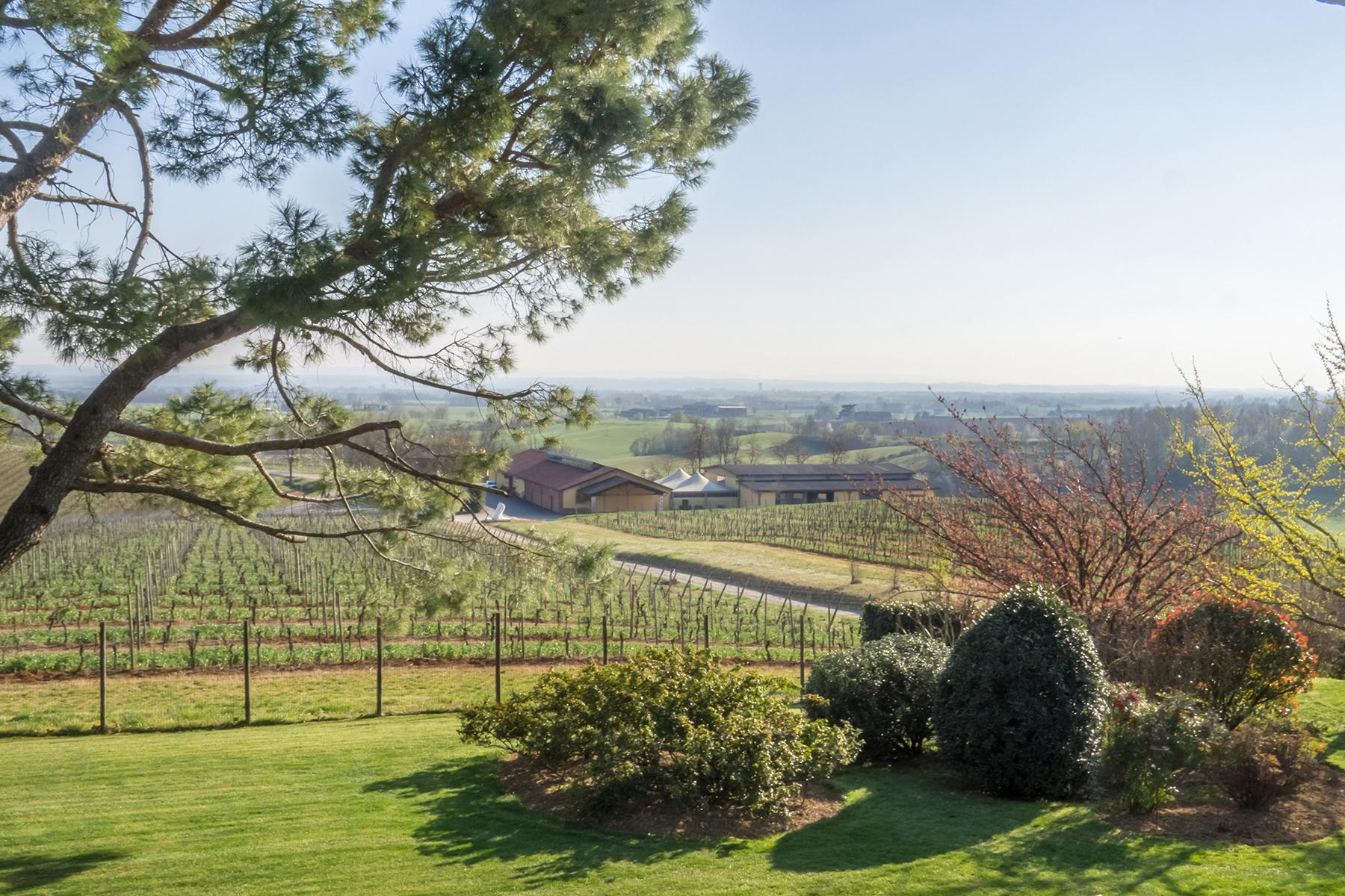 Magnificent wine producing estate in the heart of Monferrato region - 1