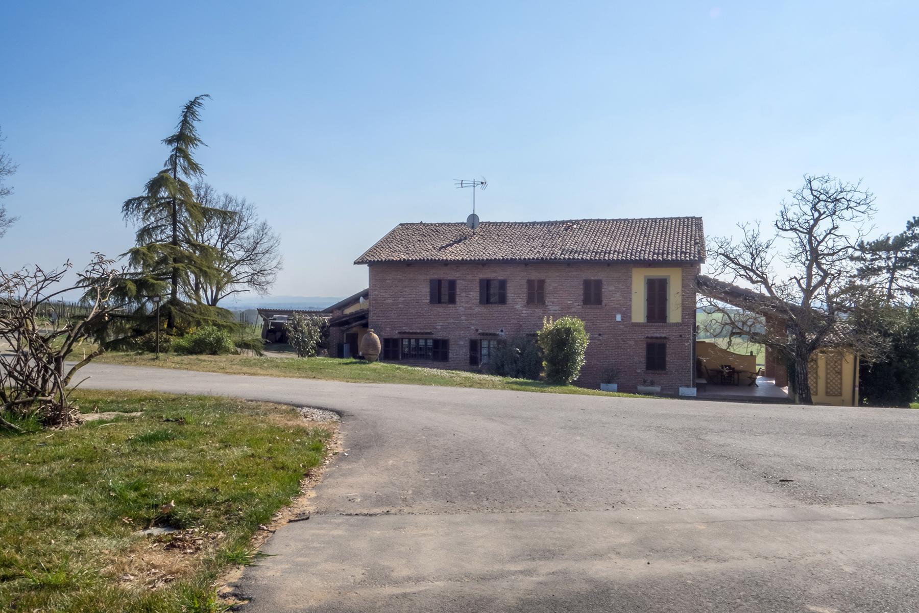 Meravigliosa azienda vitivinicola nel cuore del Monferrato - 17