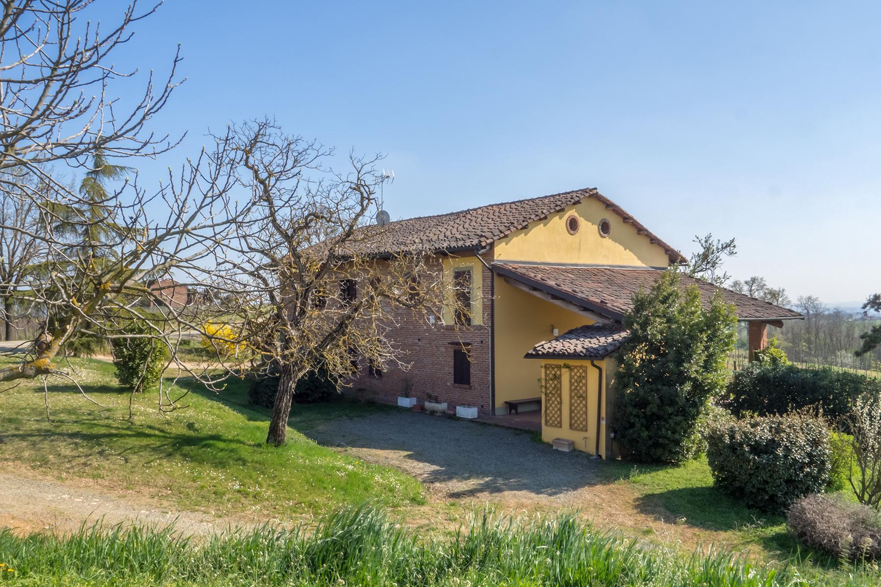 Meravigliosa azienda vitivinicola nel cuore del Monferrato - 19