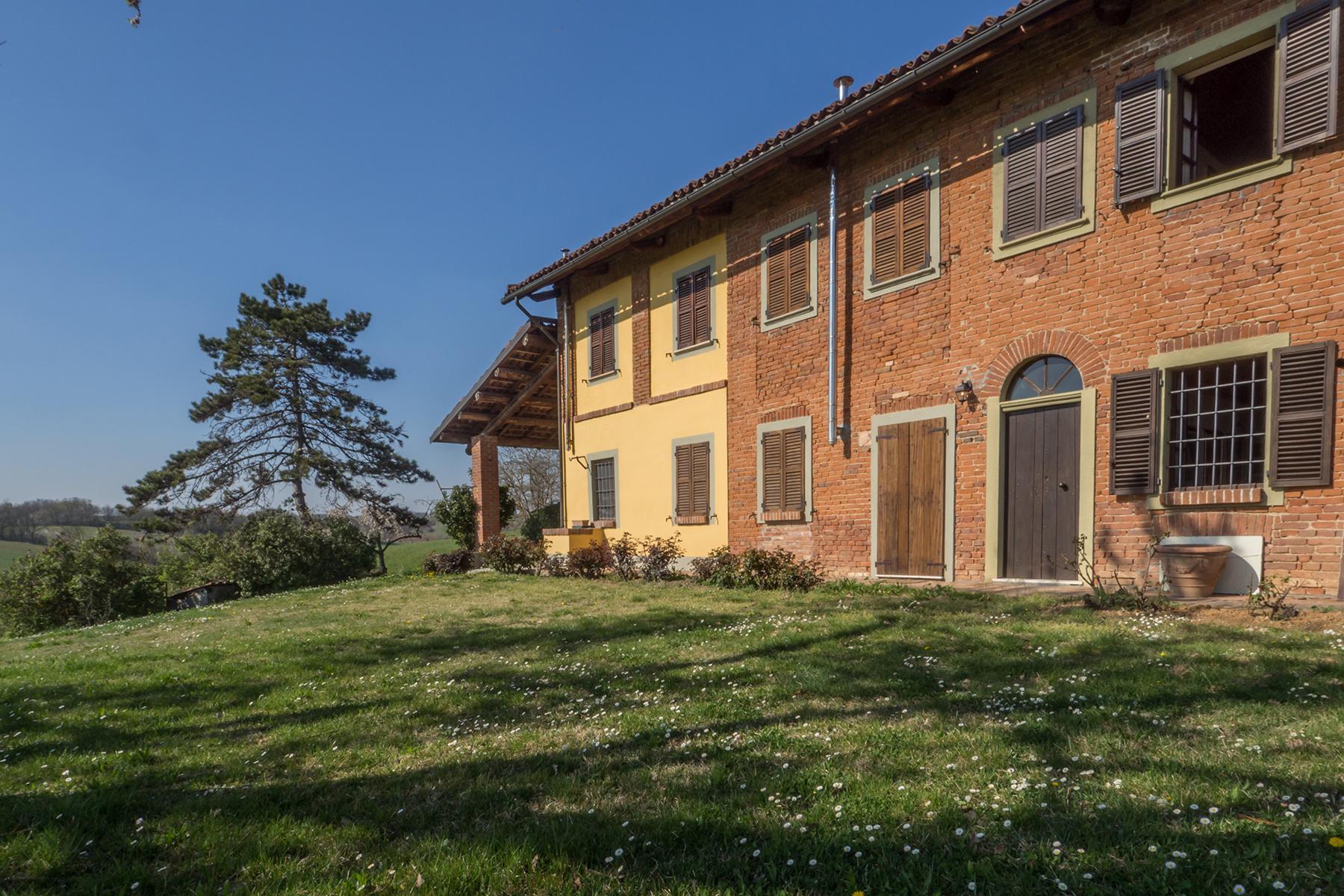 Meravigliosa azienda vitivinicola nel cuore del Monferrato - 18