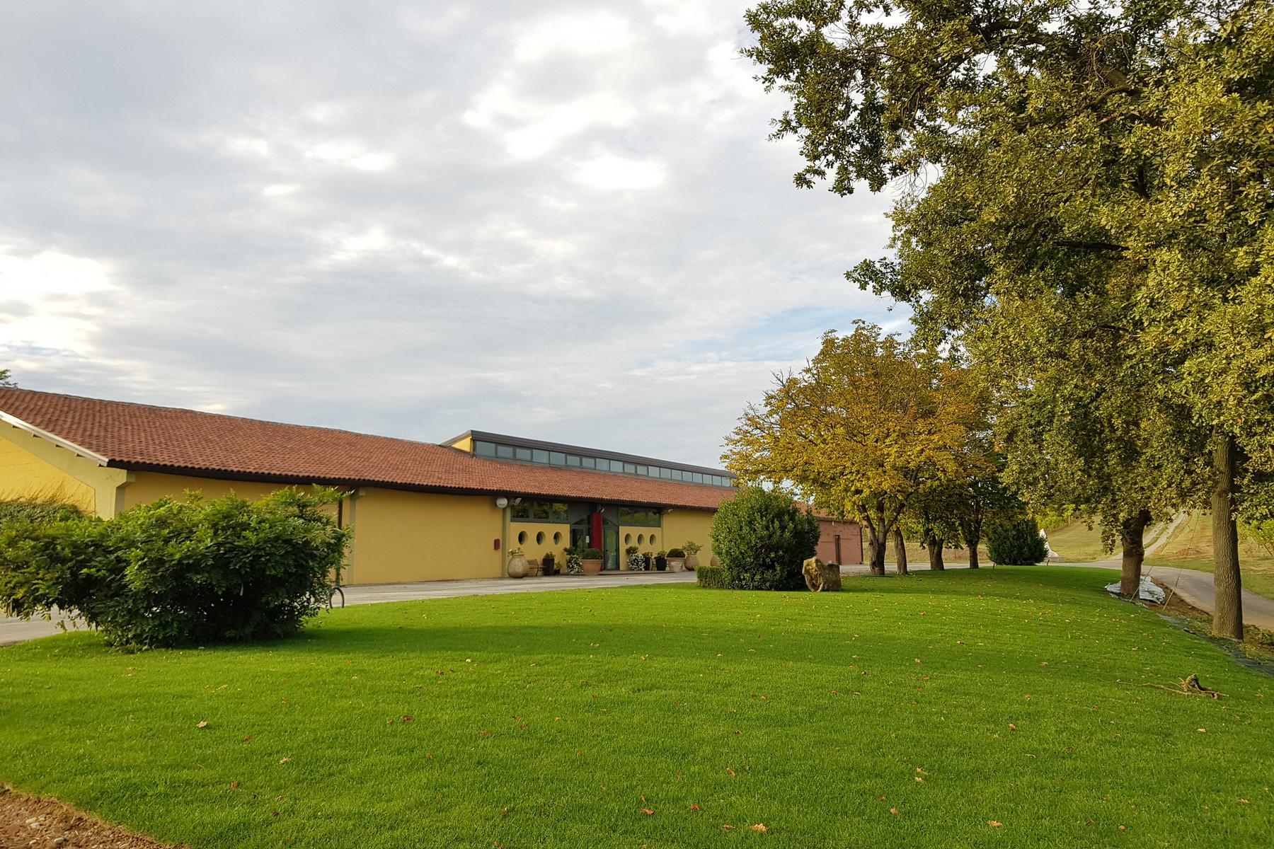 Meravigliosa azienda vitivinicola nel cuore del Monferrato - 12