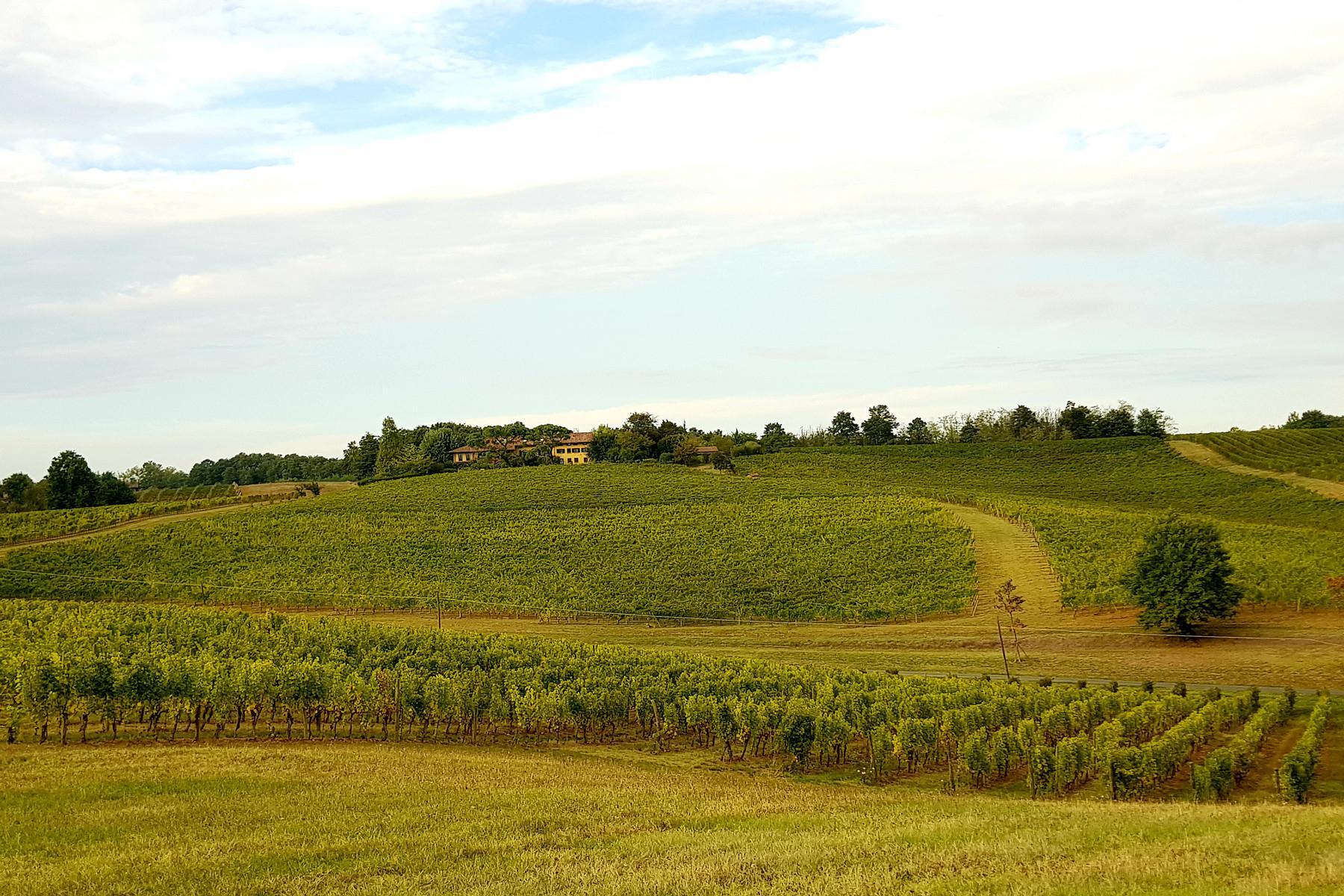 Magnifique domaine viticole au coeur du Monferrato - 4