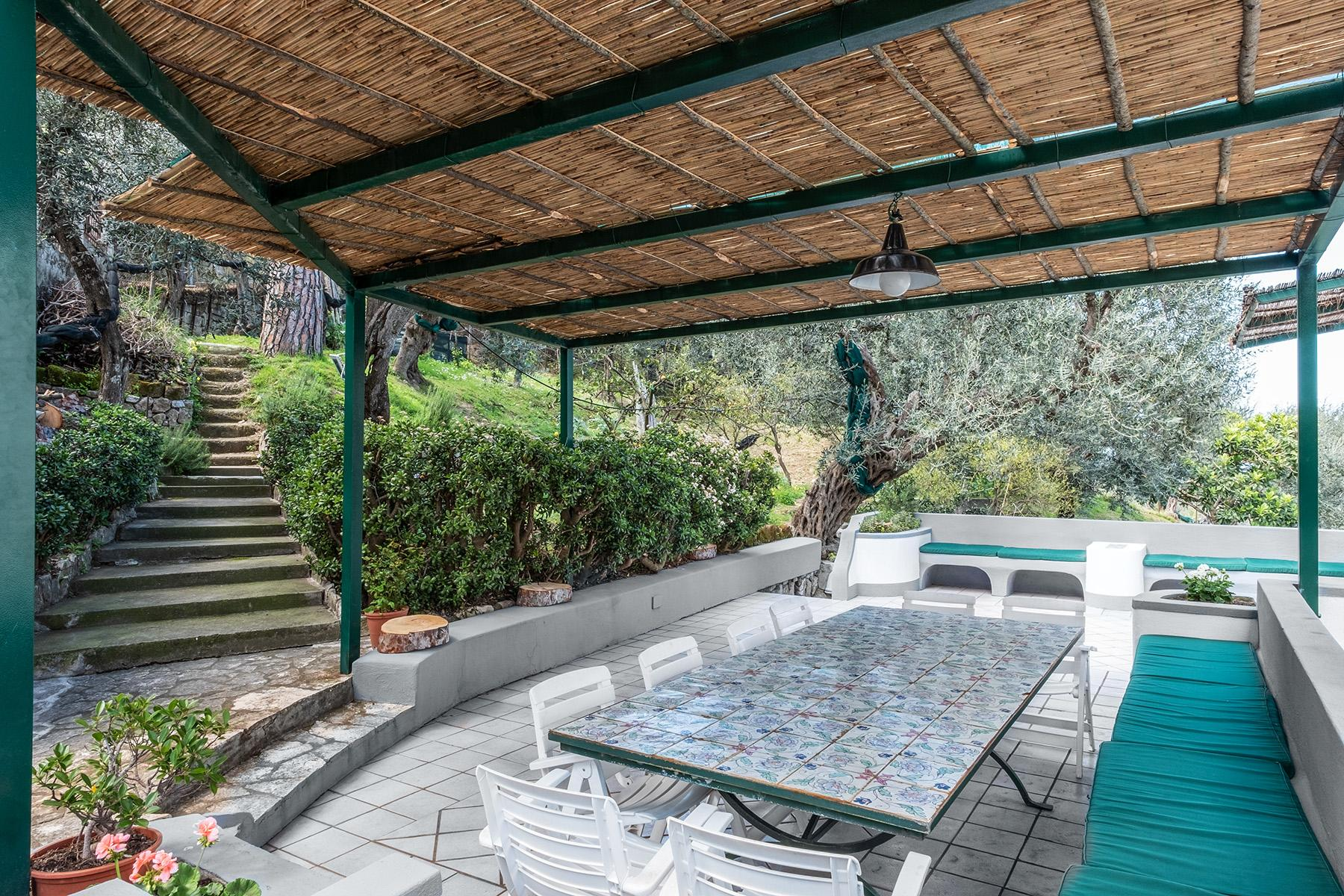 Panoramic property in the greenery in the heart of Sorrento - 12