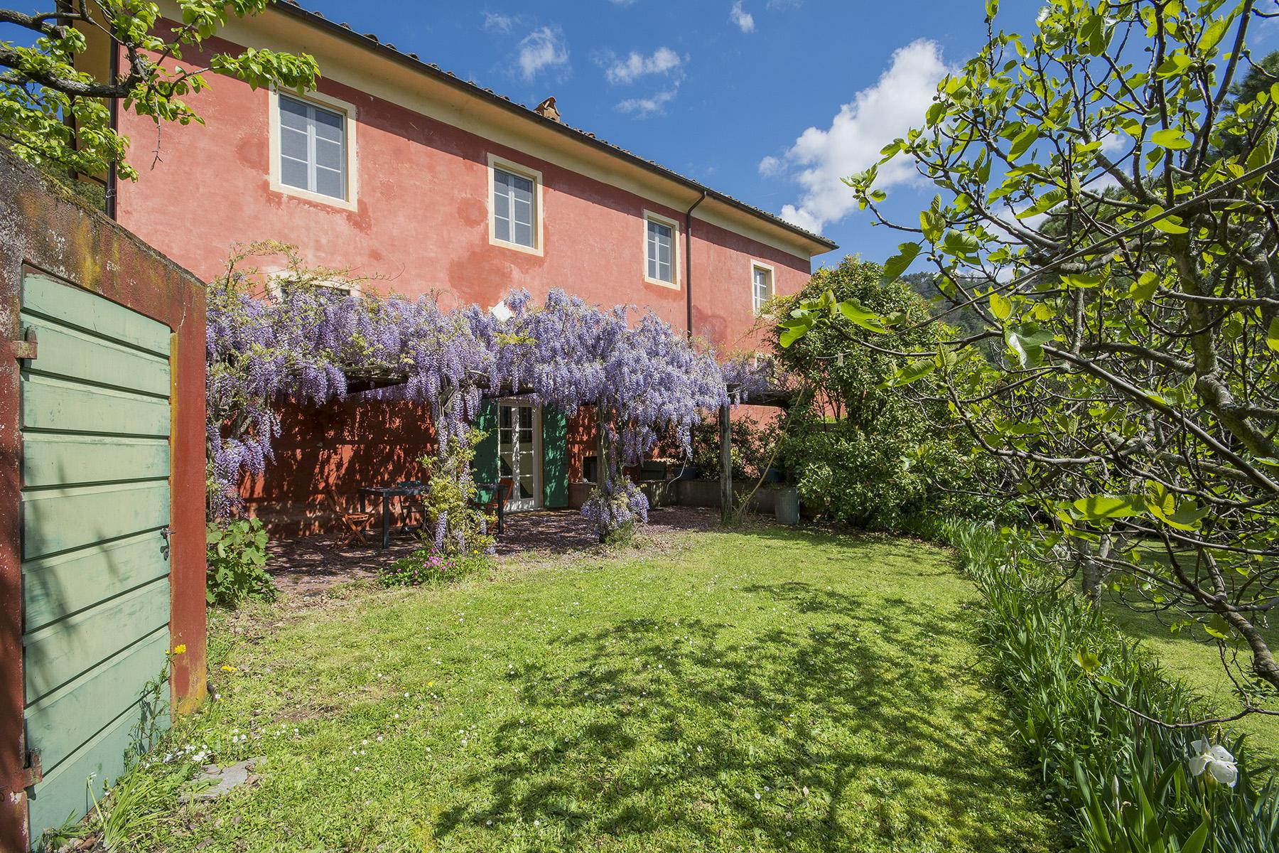 Country house in the hills of Lucca - 1