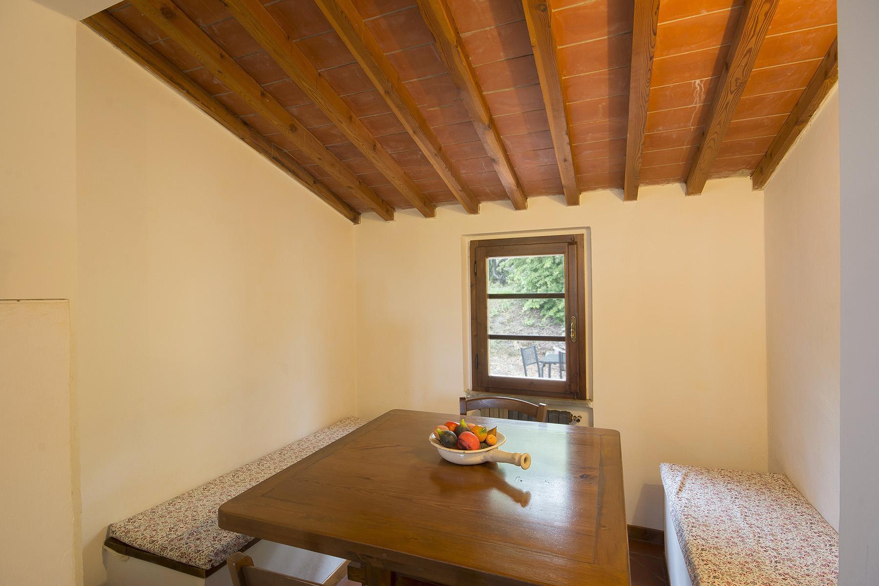 Belle maison de campagne dans les collines de Pescia - 14