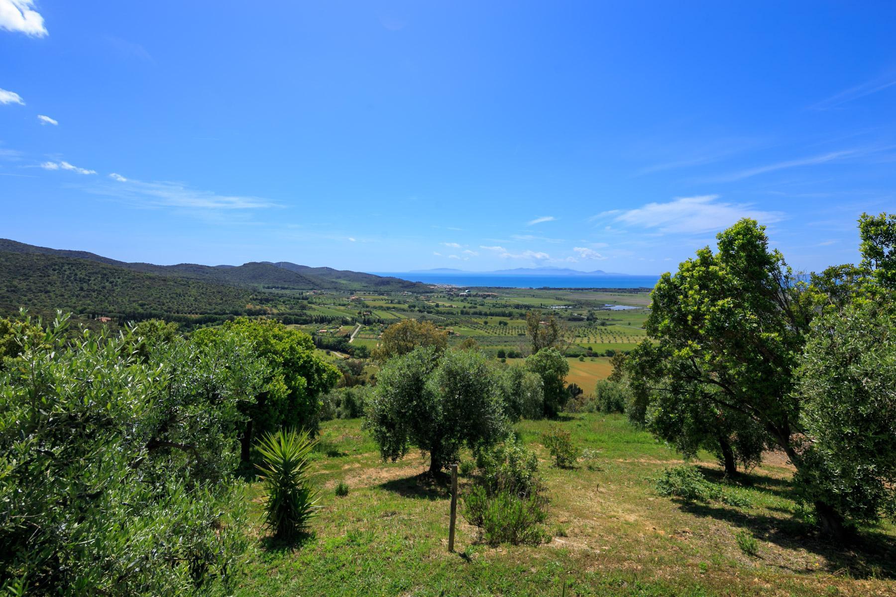 Villa et domaine avec piscine surplombant le Golfe de Scarlino - 22