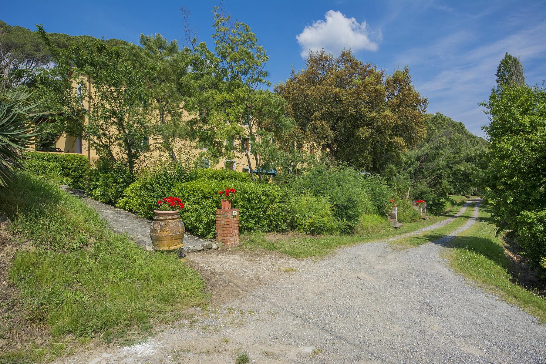 Pescia小山丘上美丽的乡间农舍 - 33