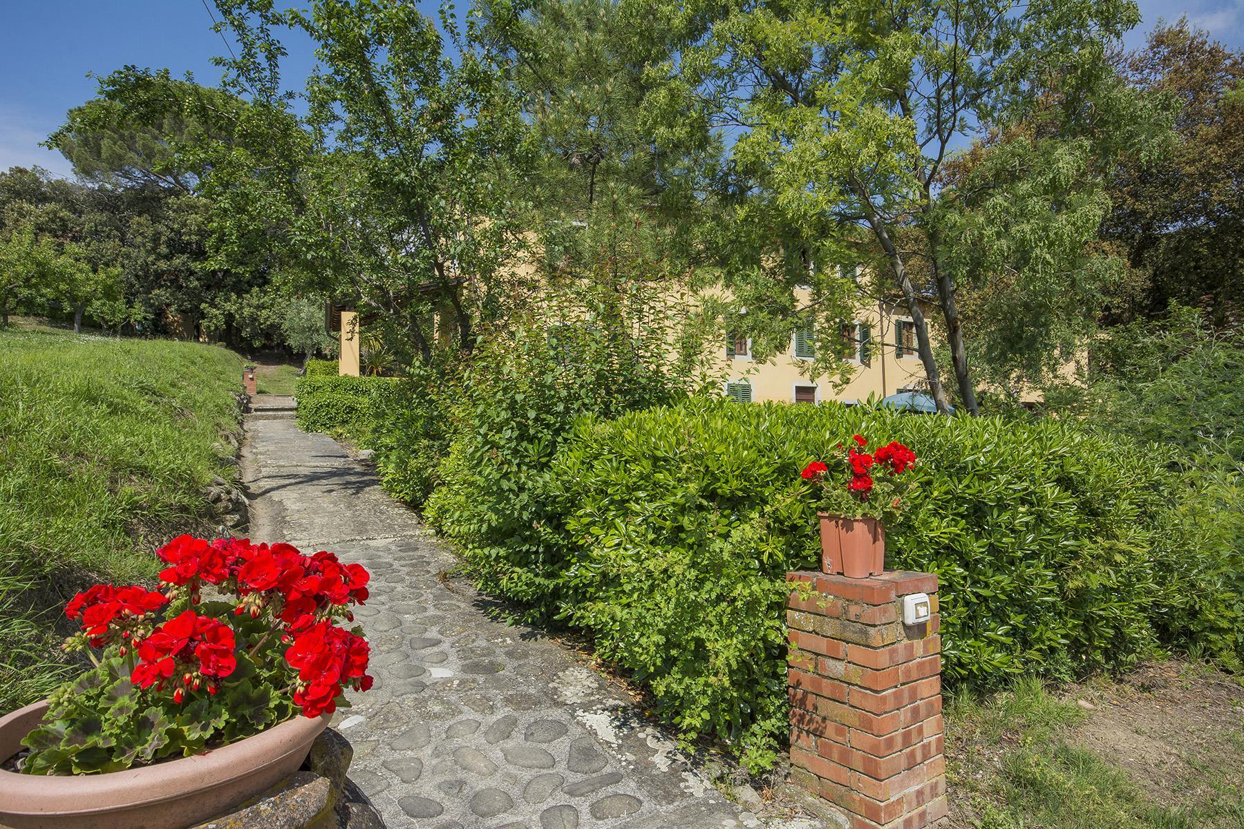 Pescia小山丘上美丽的乡间农舍 - 37