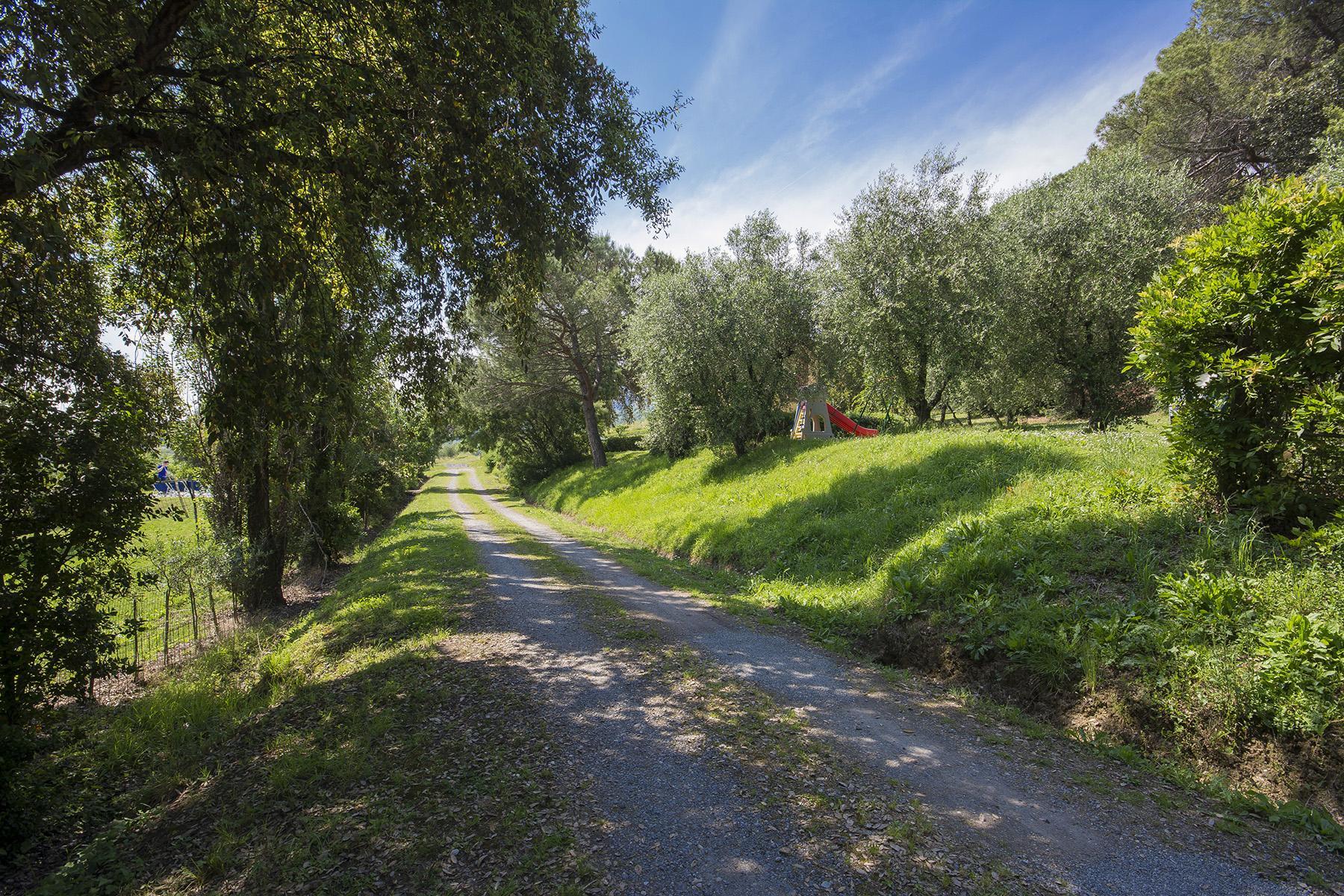 Pescia小山丘上美丽的乡间农舍 - 44