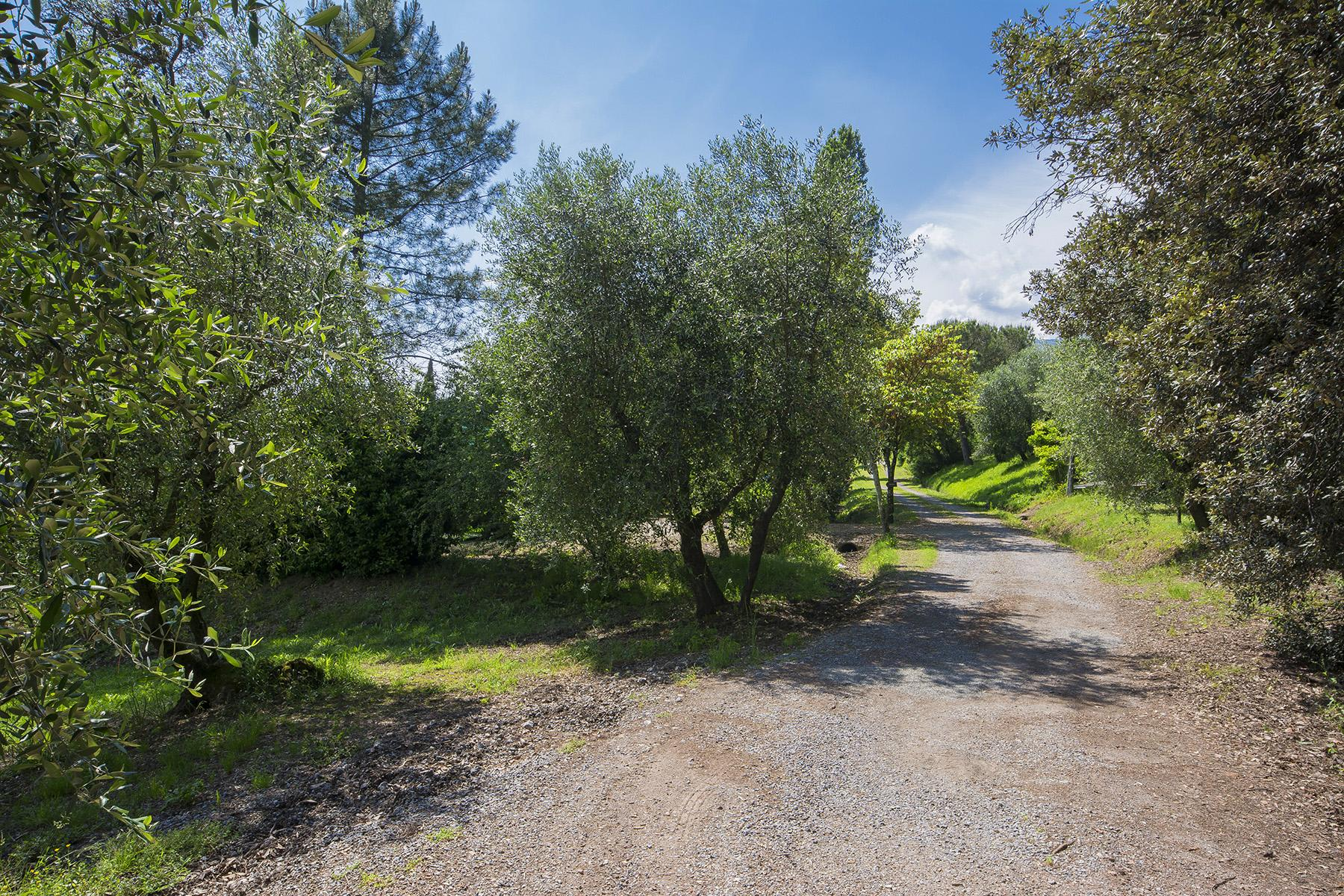 Pescia小山丘上美丽的乡间农舍 - 45
