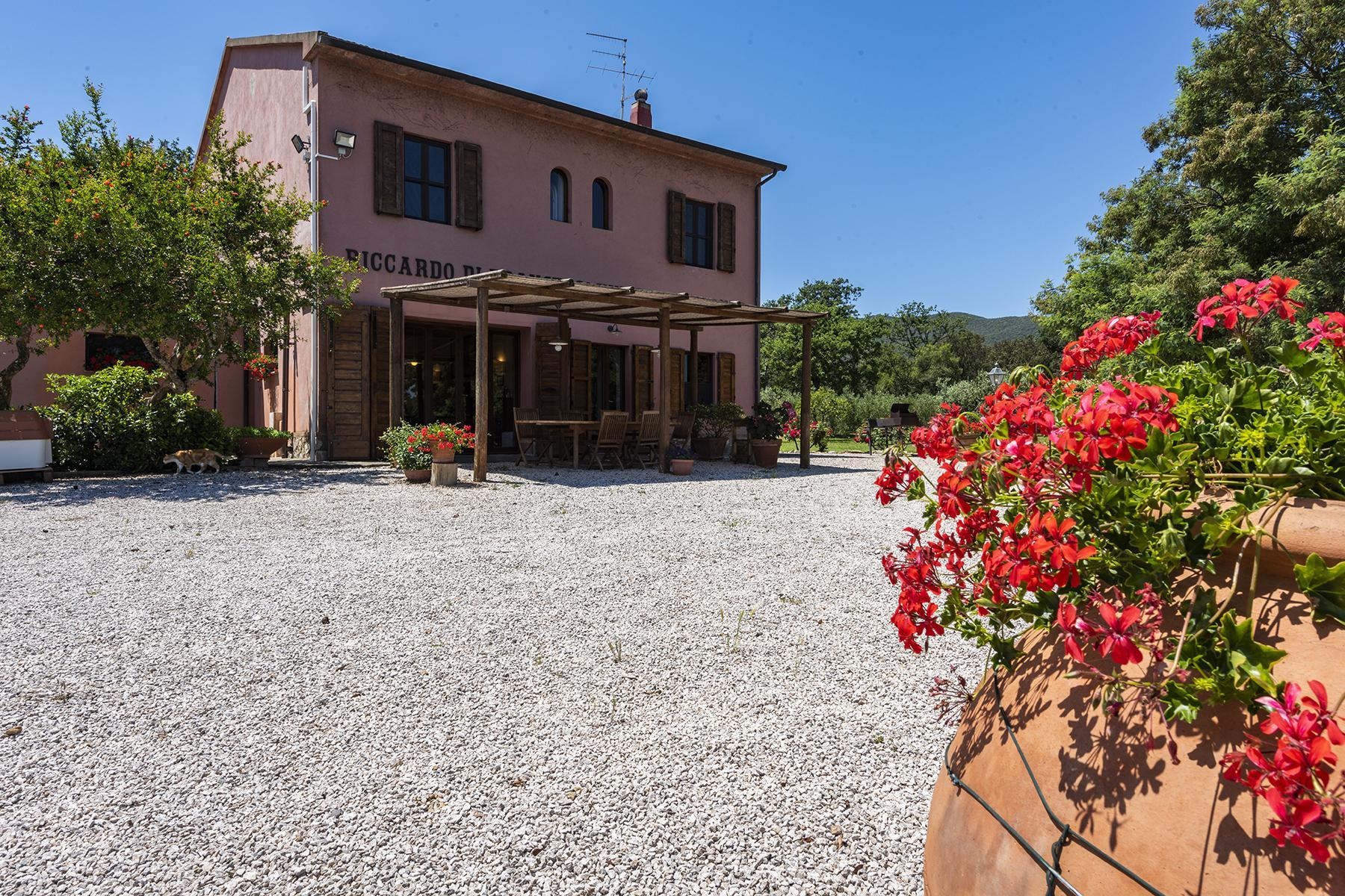 Extraordinary estate in the heart of Maremma - 10