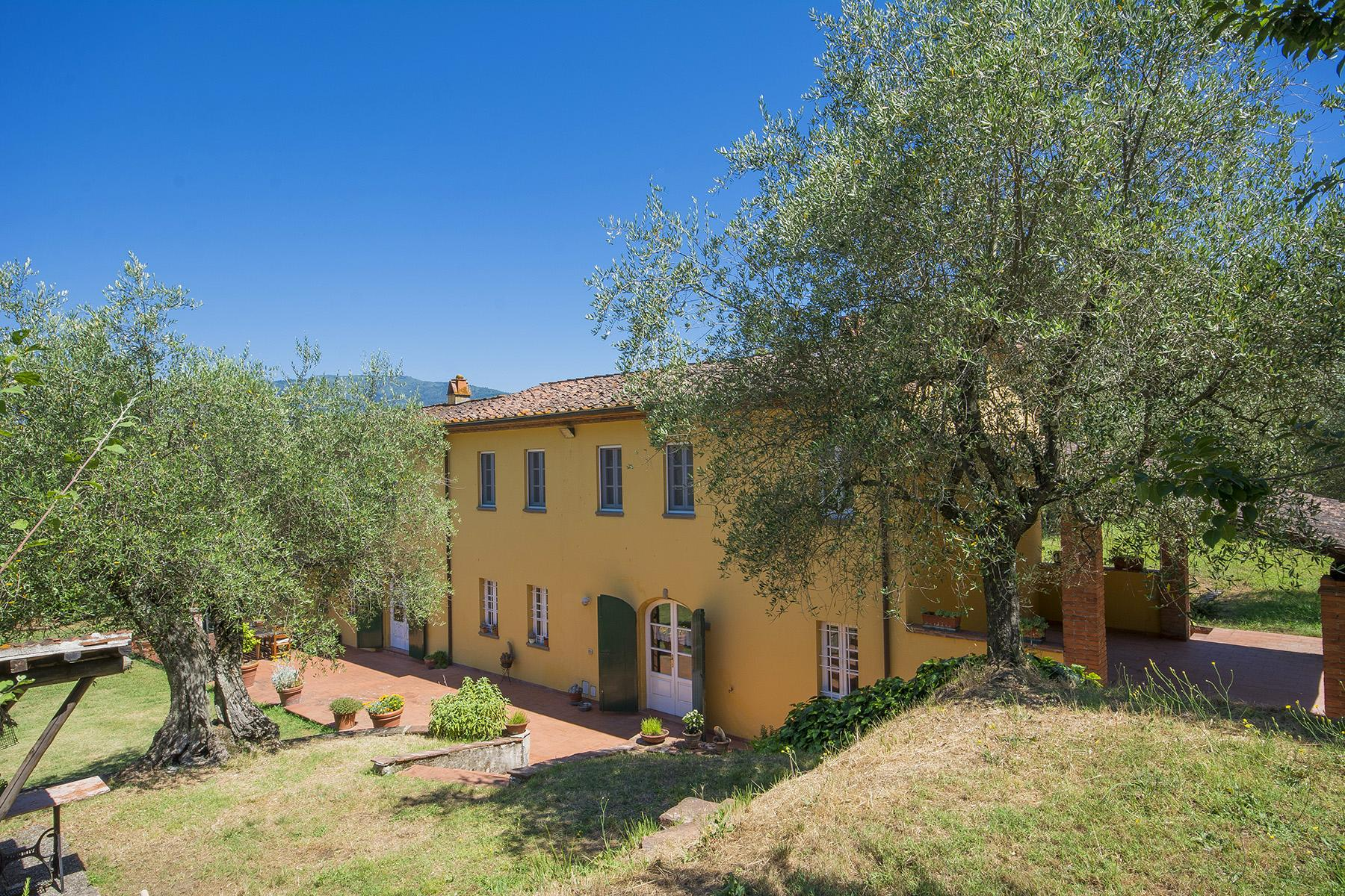 Beautiful farmhouse on the rolling hills of Lucca - 30