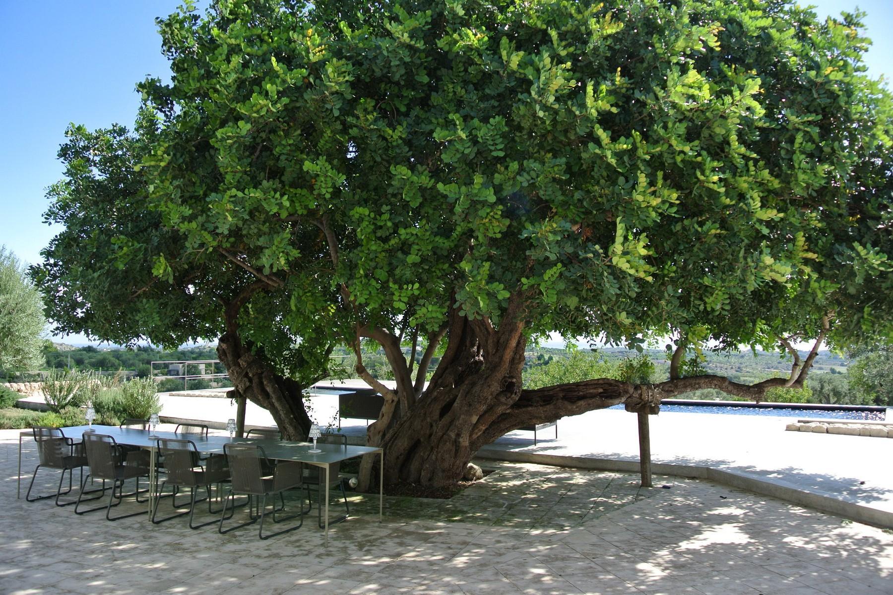 Elegante Design-Villa mit Blick auf das Vendicari-Reservat - 17