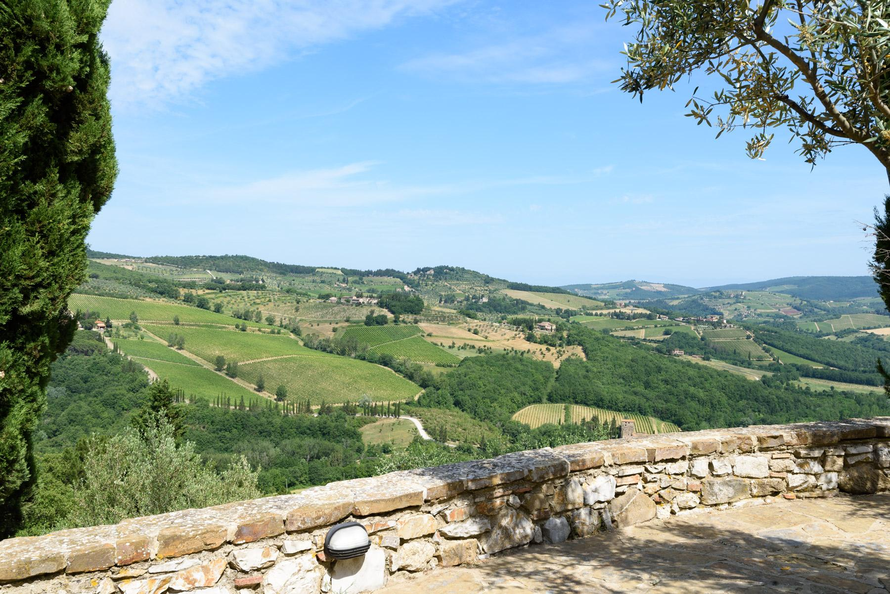 Enchanting farm in the heart of Chianti - 22