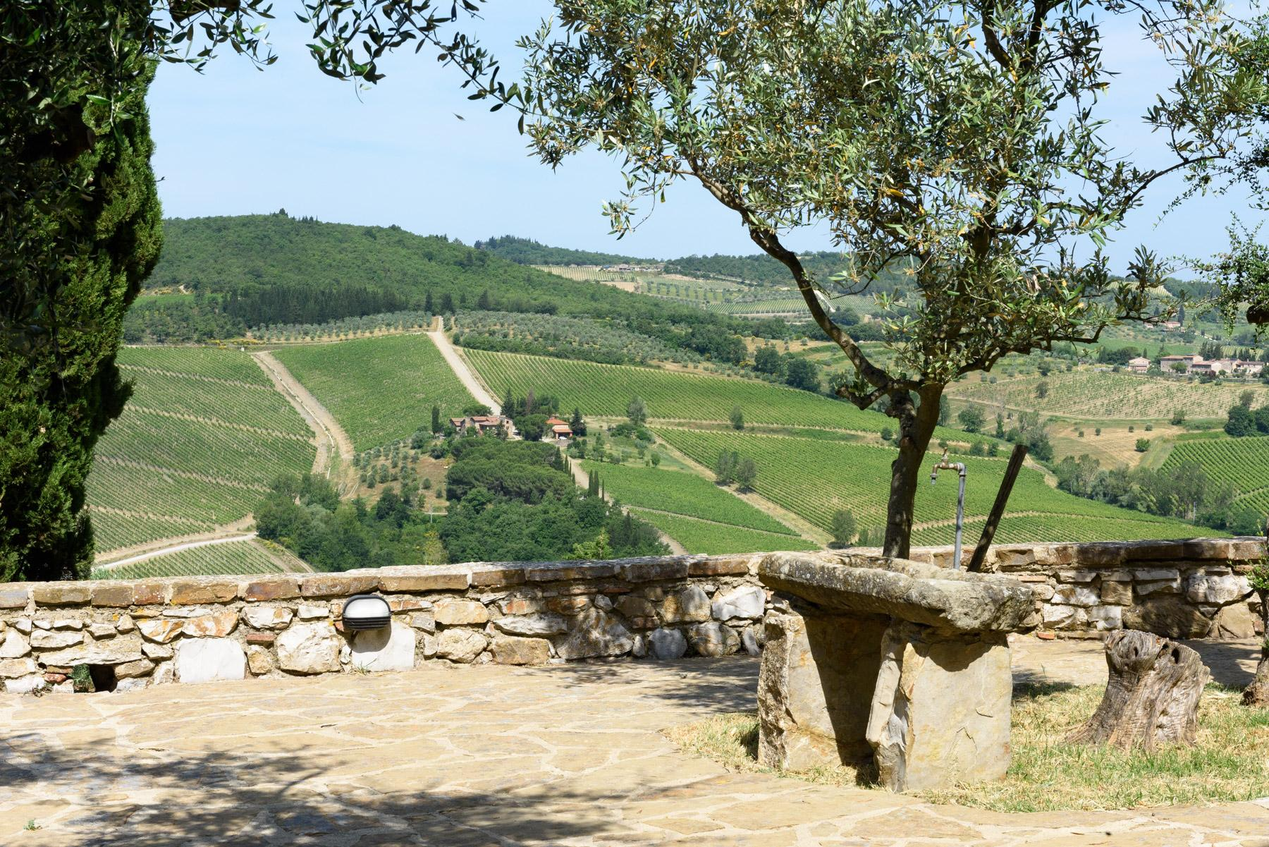 Enchanting farm in the heart of Chianti - 20
