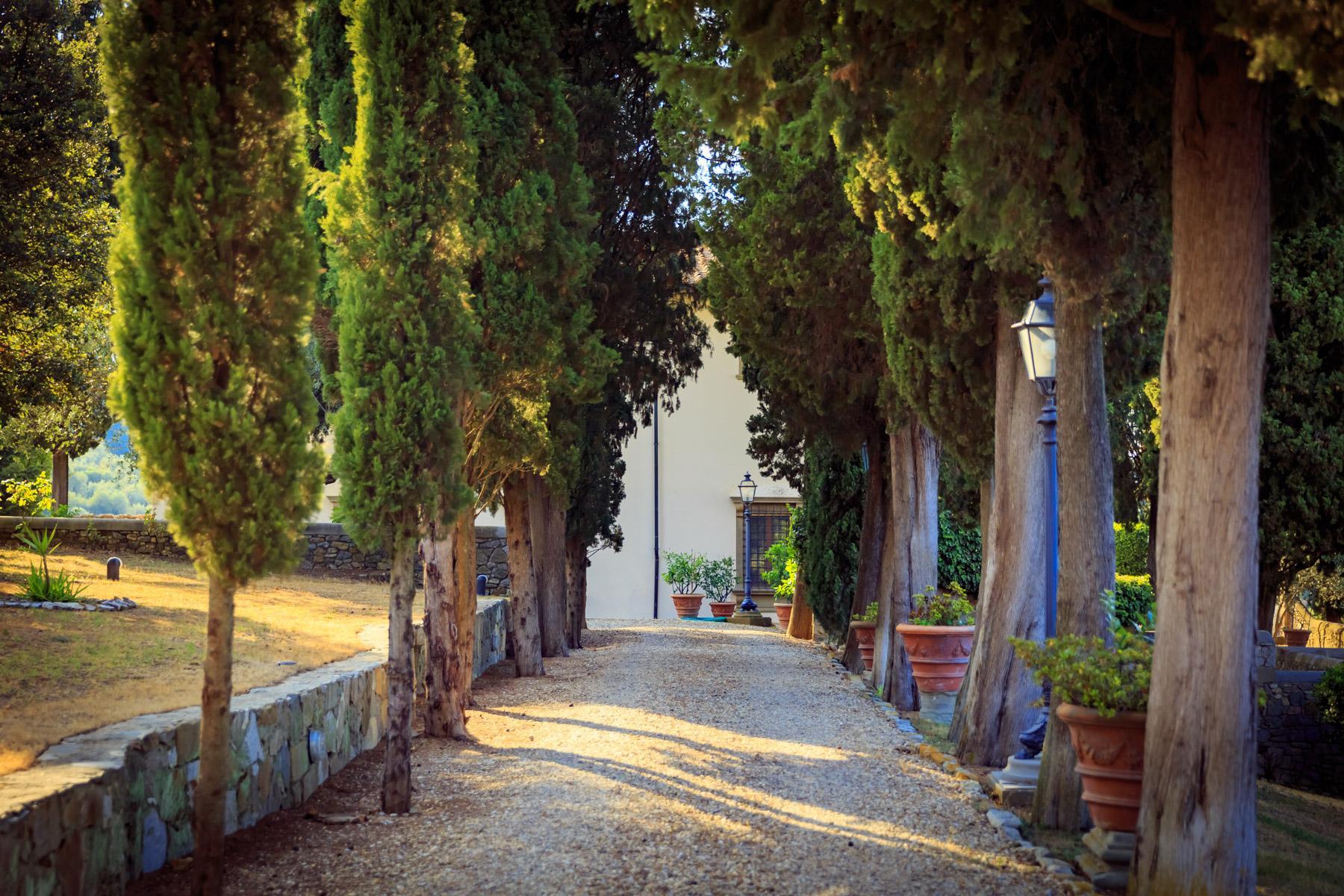 Maestosa Villa Rinascimentale sulle Colline Fiorentine con Cantina e Vigneto - 6
