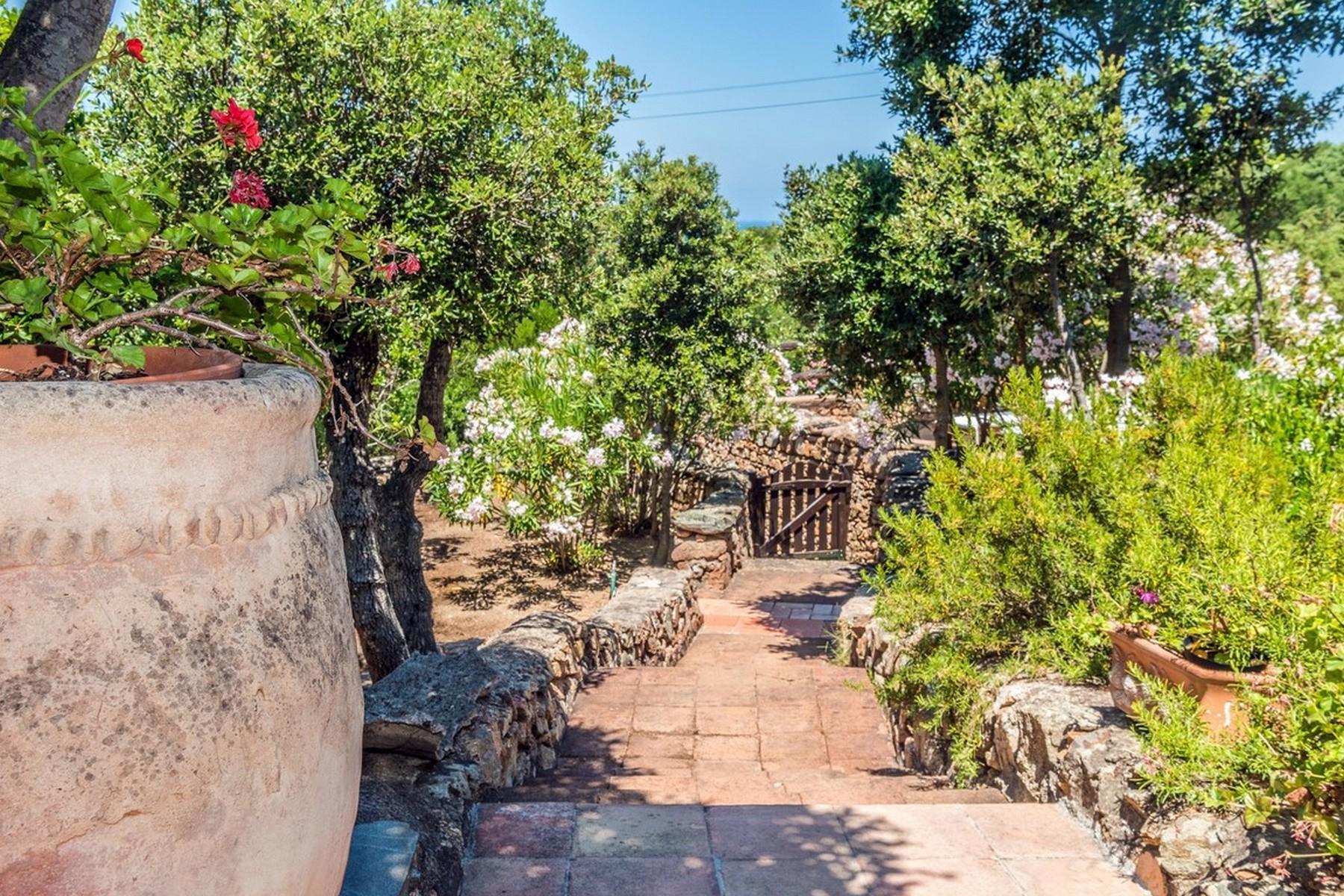 撒丁岛西北部Liscia di Vacca地区优美的别墅 - 23