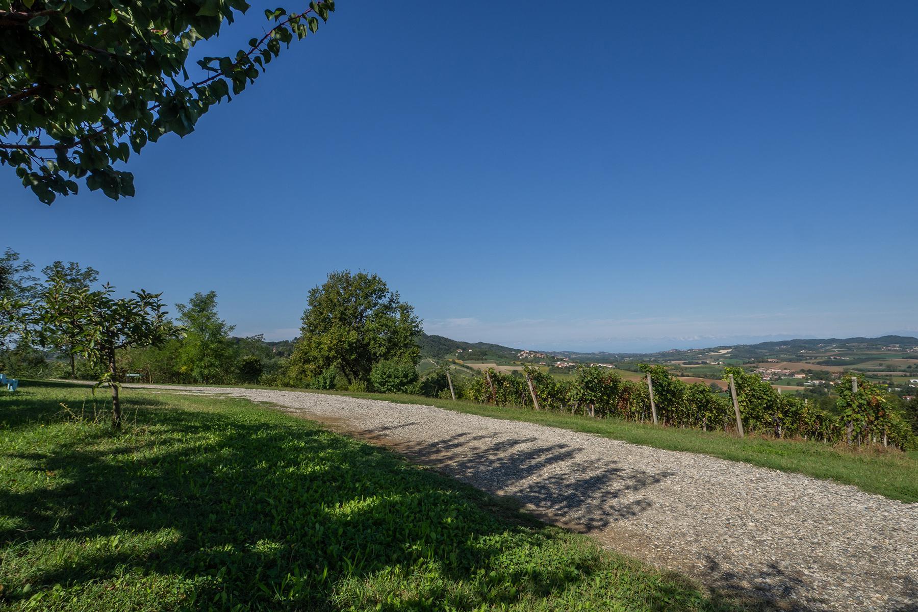 Superbe ferme au coeur du Monferrato - 29