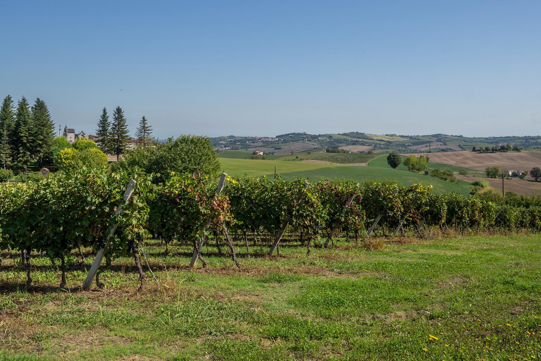 Superbe ferme au coeur du Monferrato - 27
