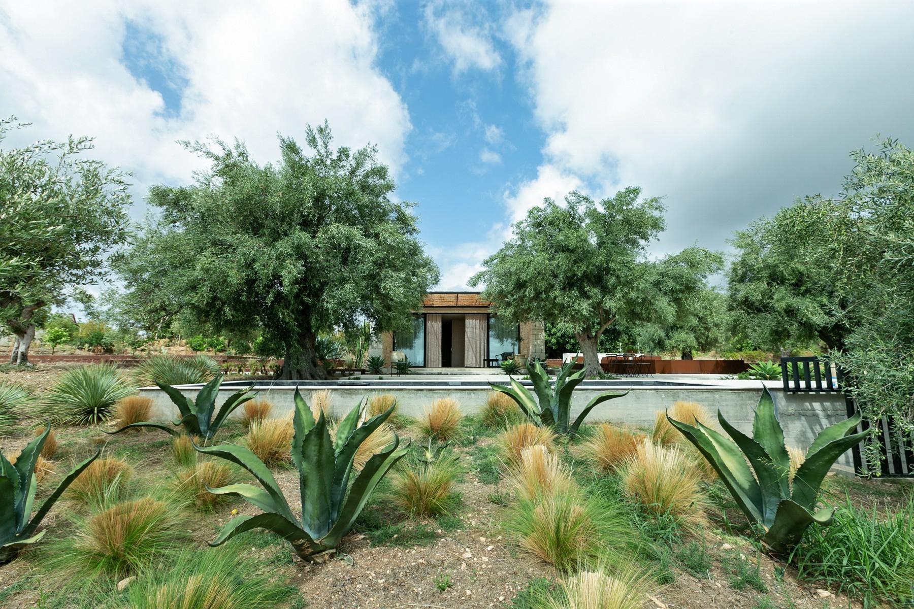 拥有游泳池和附属建筑当代设计的别墅 - 24