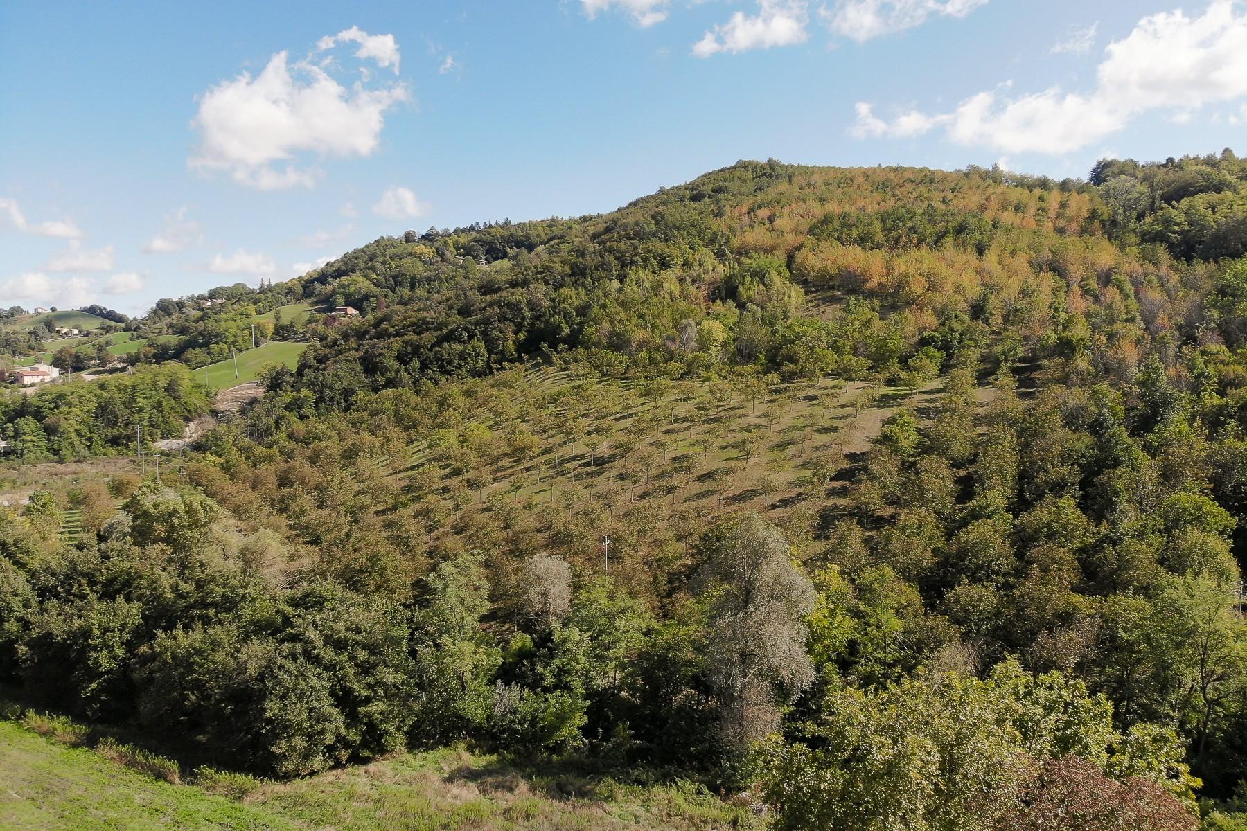 Unique period villa in Salsomaggiore Terme - 32