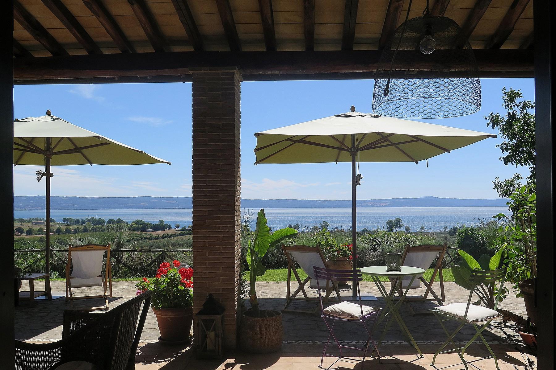 俯瞰着Bolsena湖泊的迷人农舍 - 1