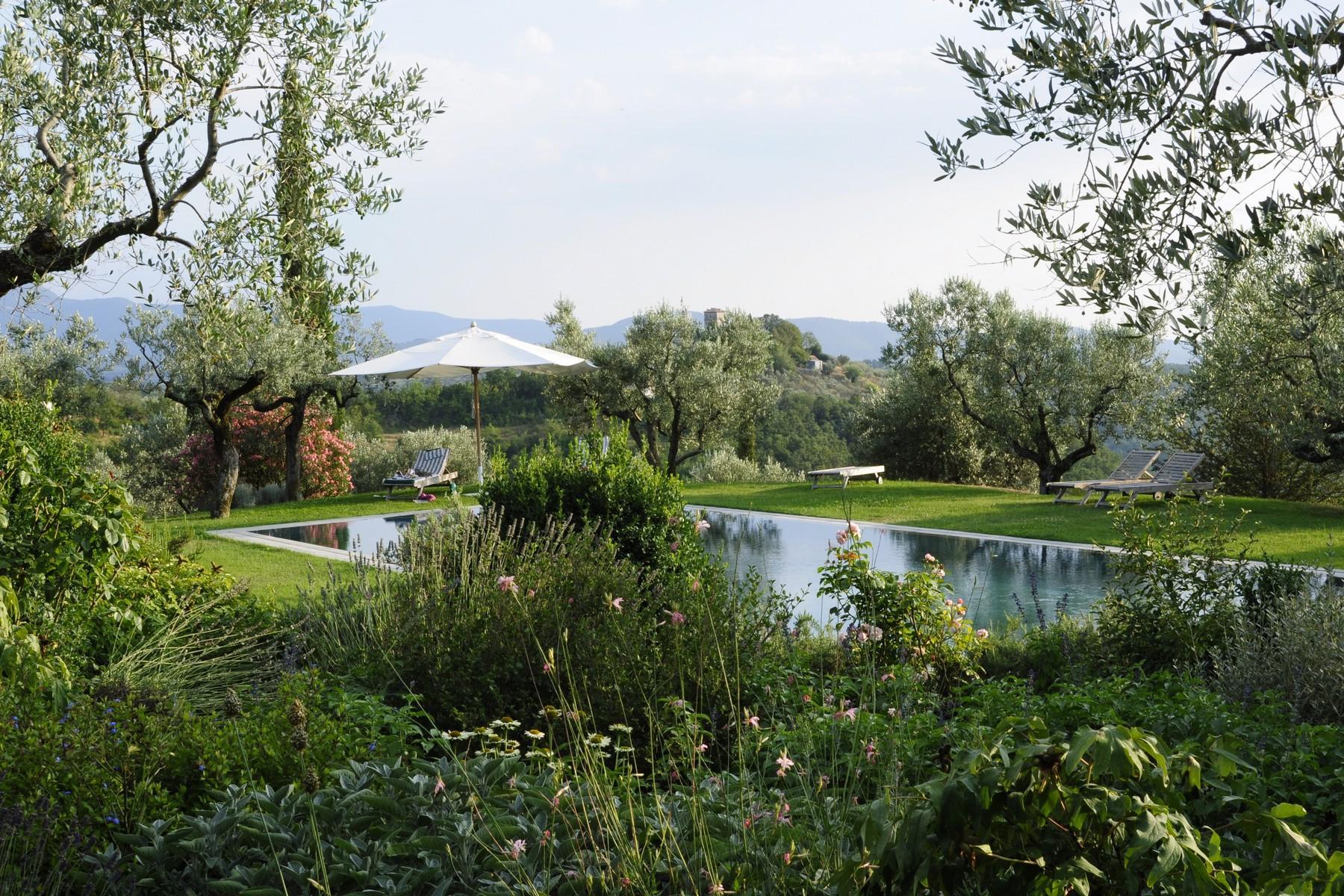 中世纪村庄Oliveto山顶上的雄壮宫殿 - 23