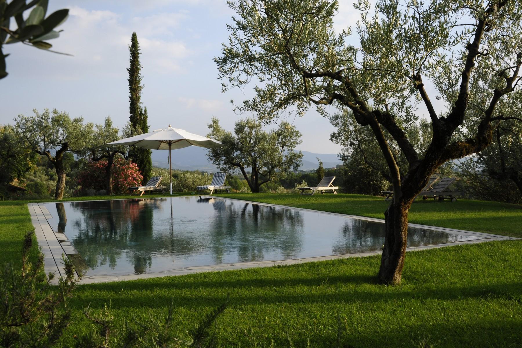 中世纪村庄Oliveto山顶上的雄壮宫殿 - 3