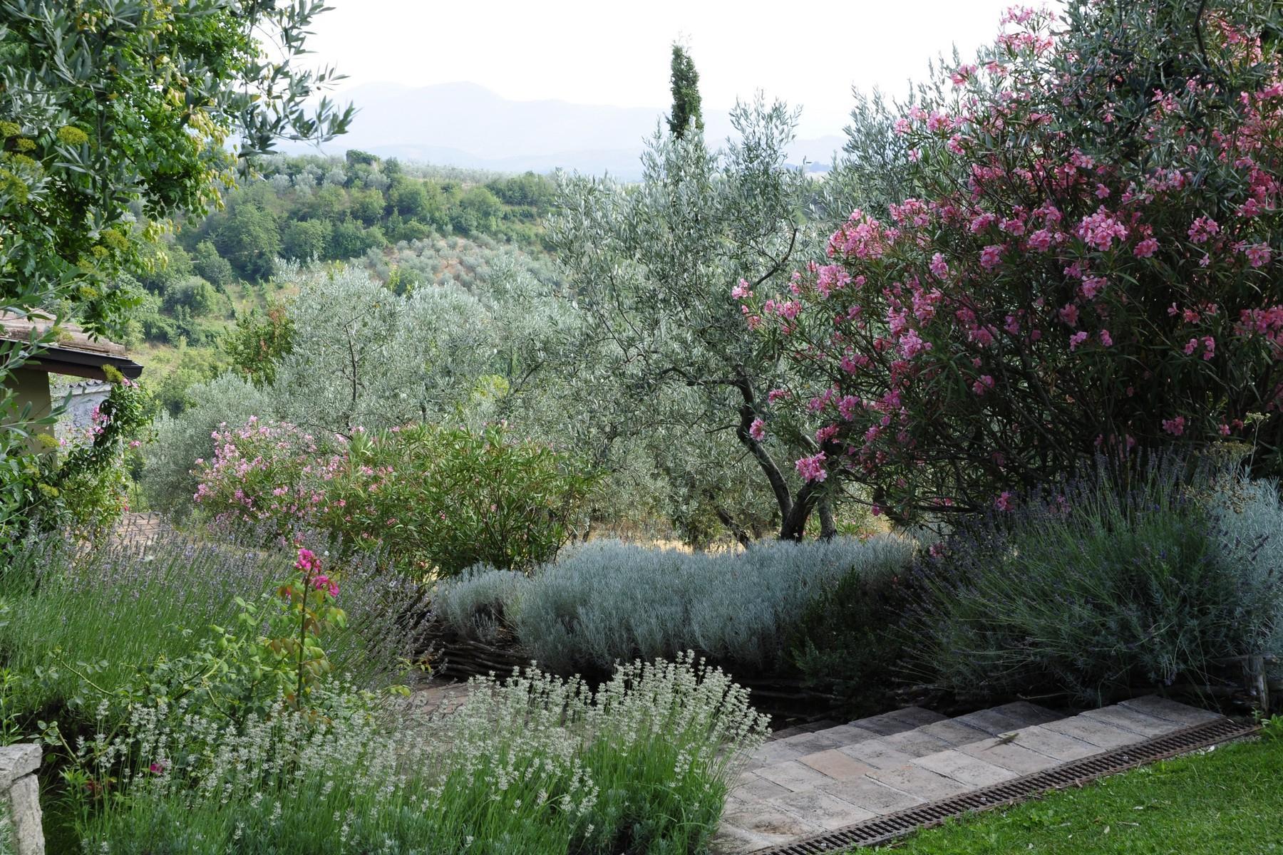 中世纪村庄Oliveto山顶上的雄壮宫殿 - 26