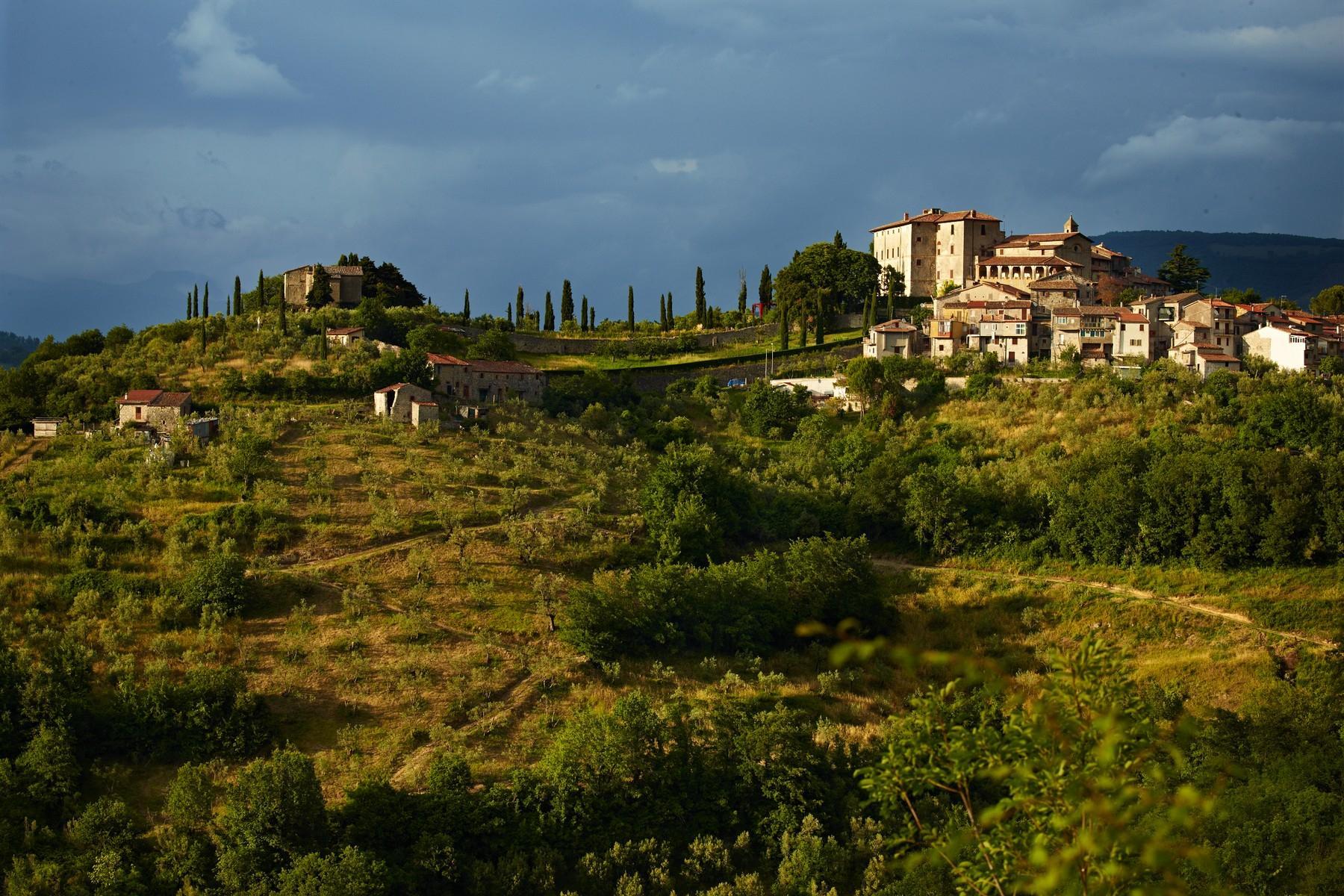 中世纪村庄Oliveto山顶上的雄壮宫殿 - 29