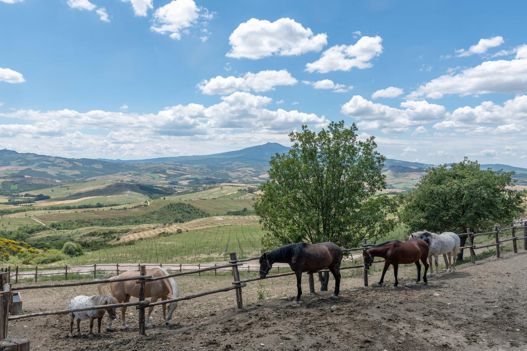 Equestrian facility/boutique hotel Val d'Orcia - 32