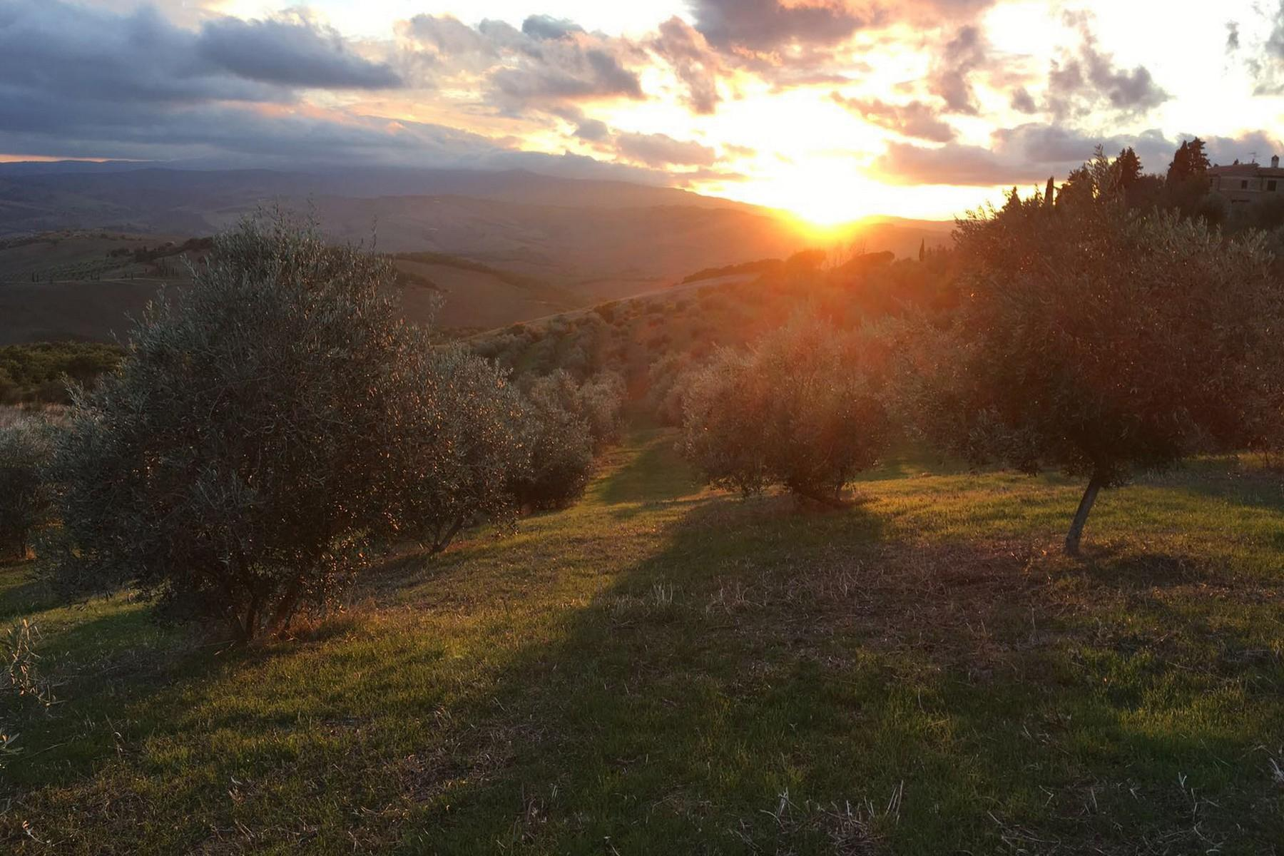 Equestrian facility/boutique hotel Val d'Orcia - 34