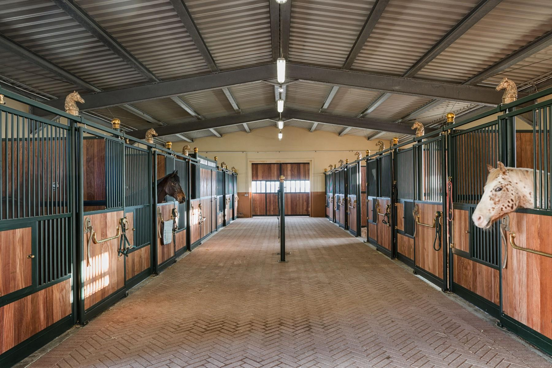 Equestrian facility/boutique hotel Val d'Orcia - 8