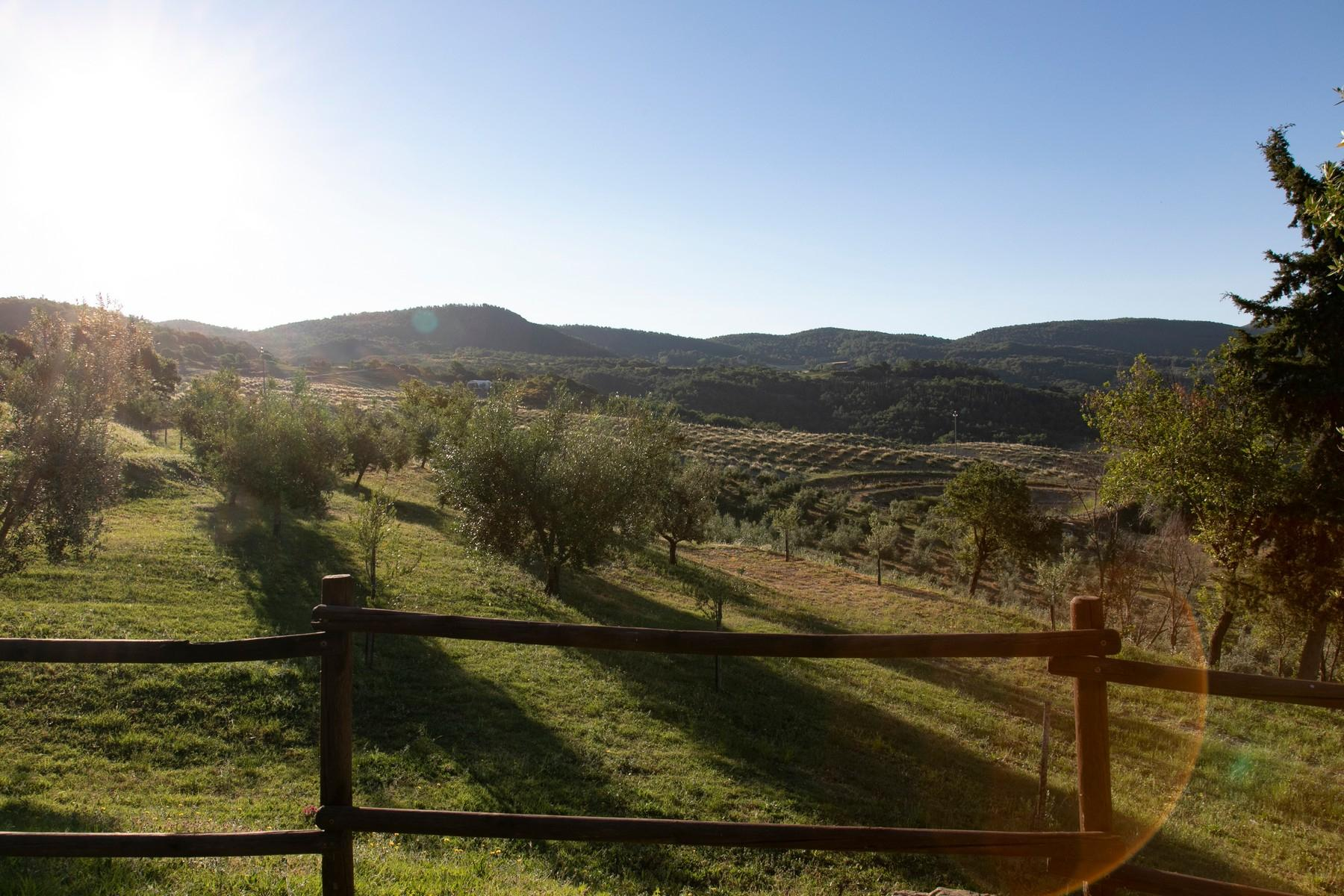 Equestrian facility/boutique hotel Val d'Orcia - 38