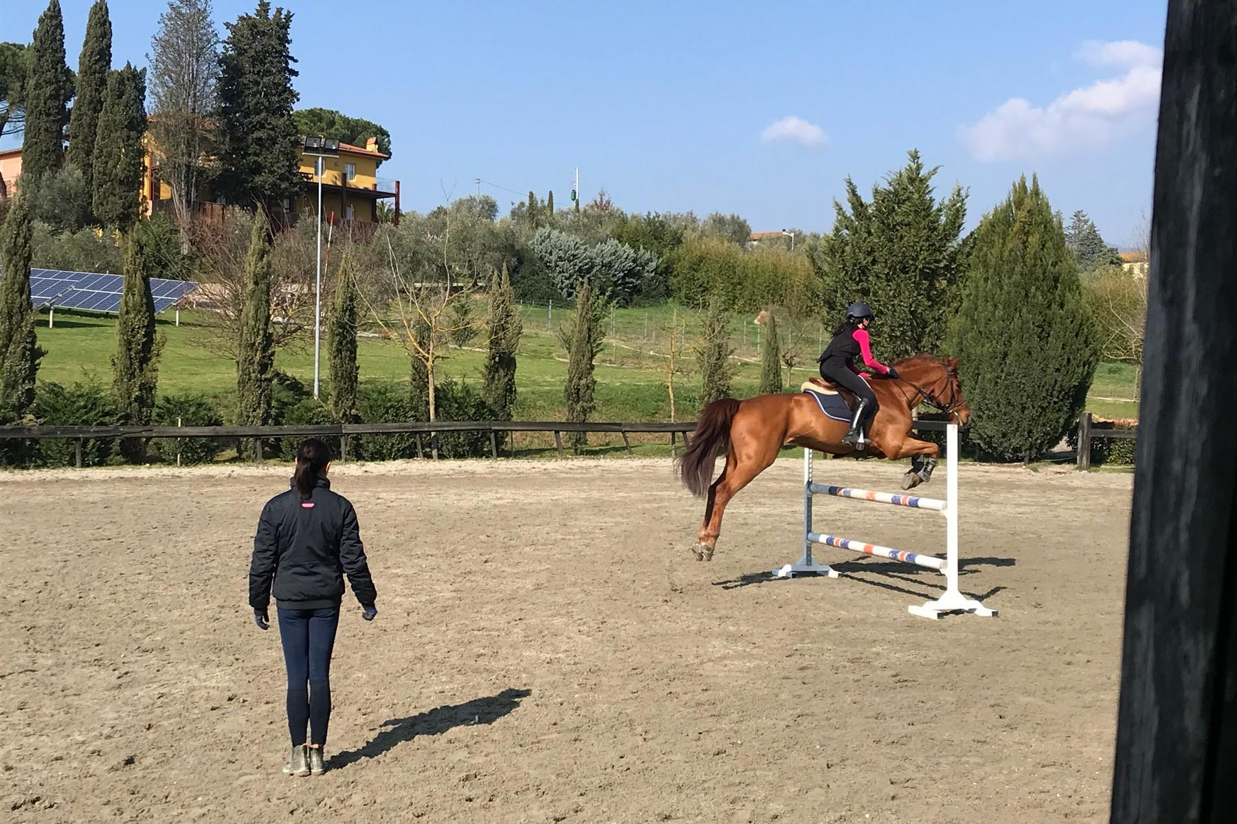 Luxury equestrian property in Tuscany - 27