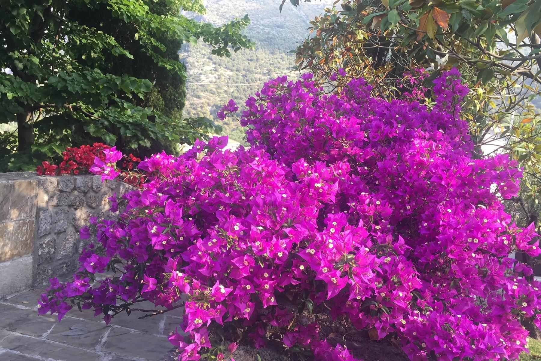 Wonderful villa in Maratea (PZ) - 15