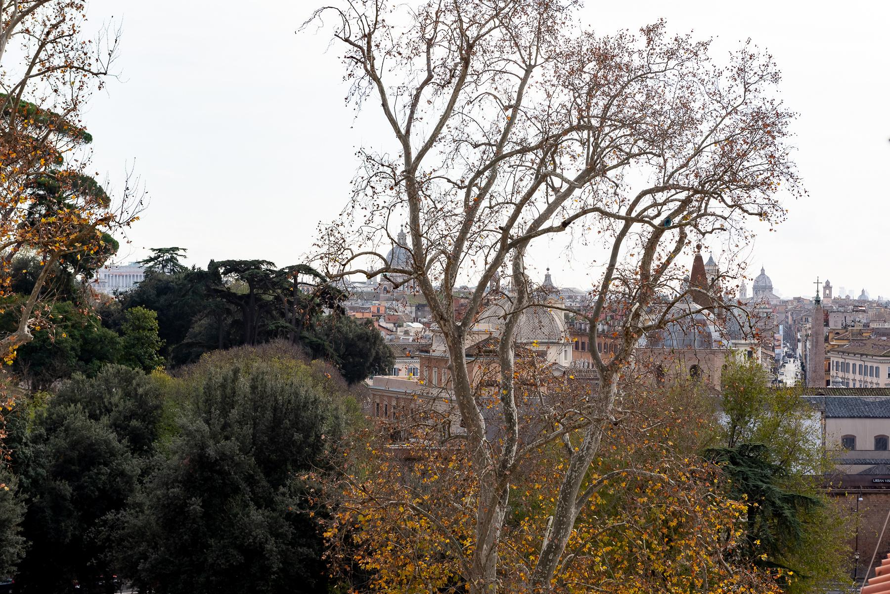 Gorgeous duplex penthouse with terraces in unique location - 24